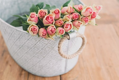 shallow focus photography of bouquet of pink flower in white bucket roses teams background