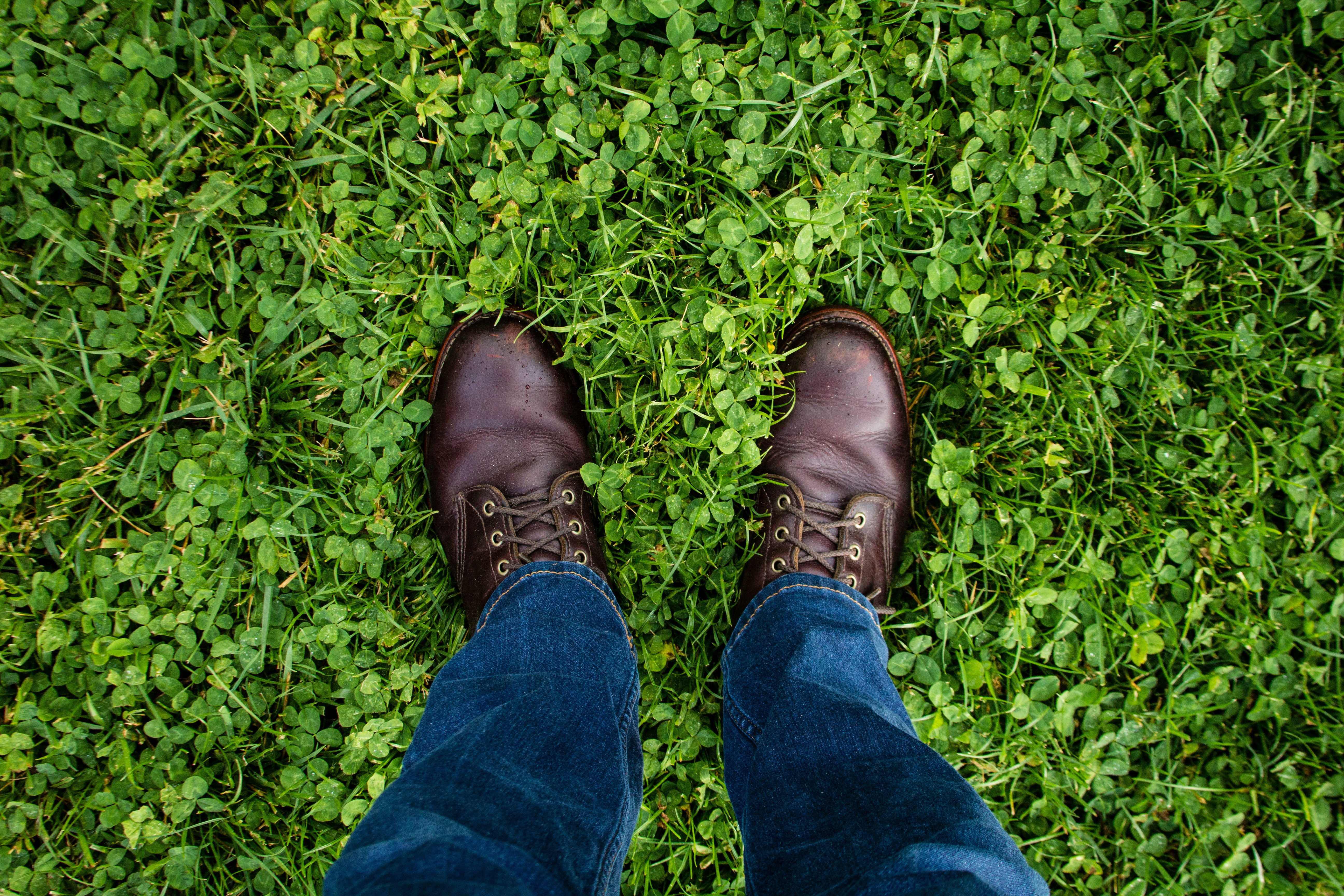 person in blue jeans and wearing pair of brown leather dress shoes standing on green grass