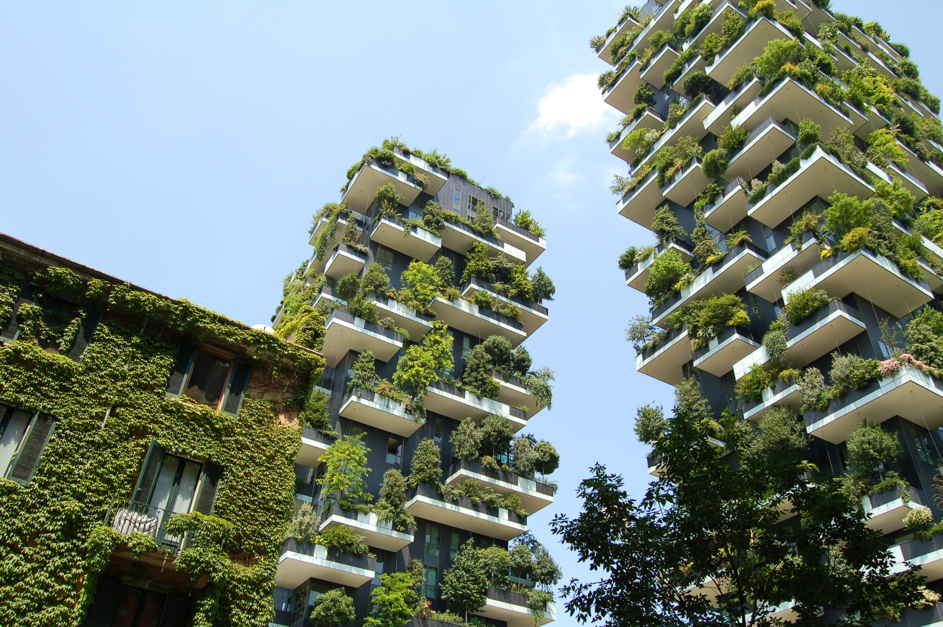 Two tall buildings with large green bushes and trees on their terraces