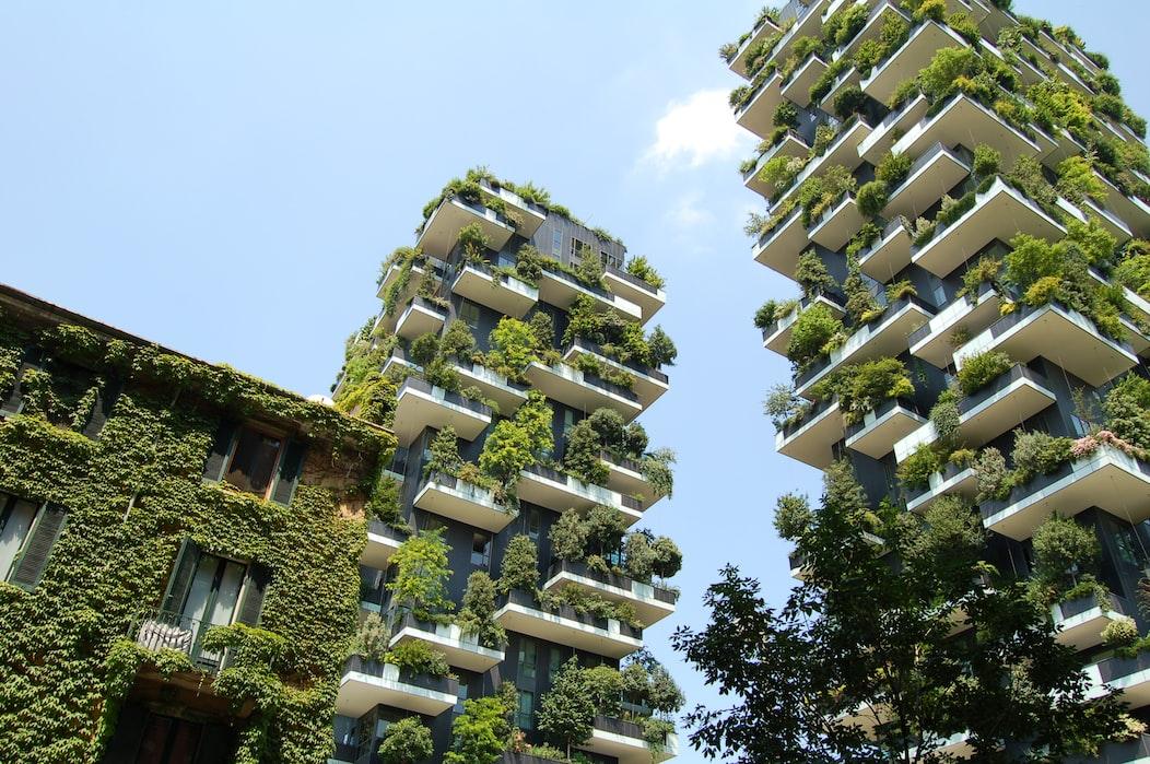 Vertical Garden Ideas | How to Grow Vegetables In A Vertical Garden