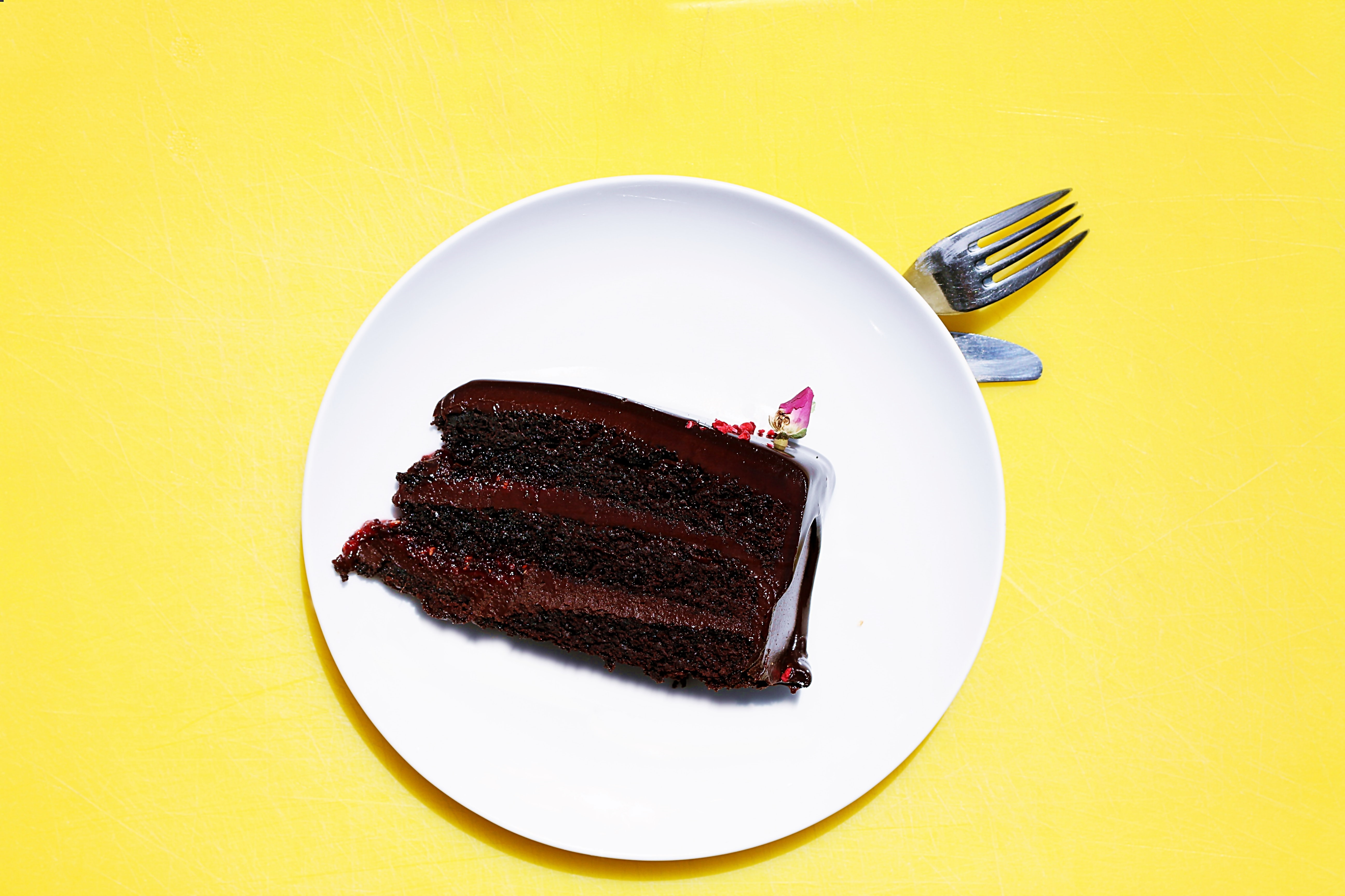Plate of chocolate cake on a yellow background