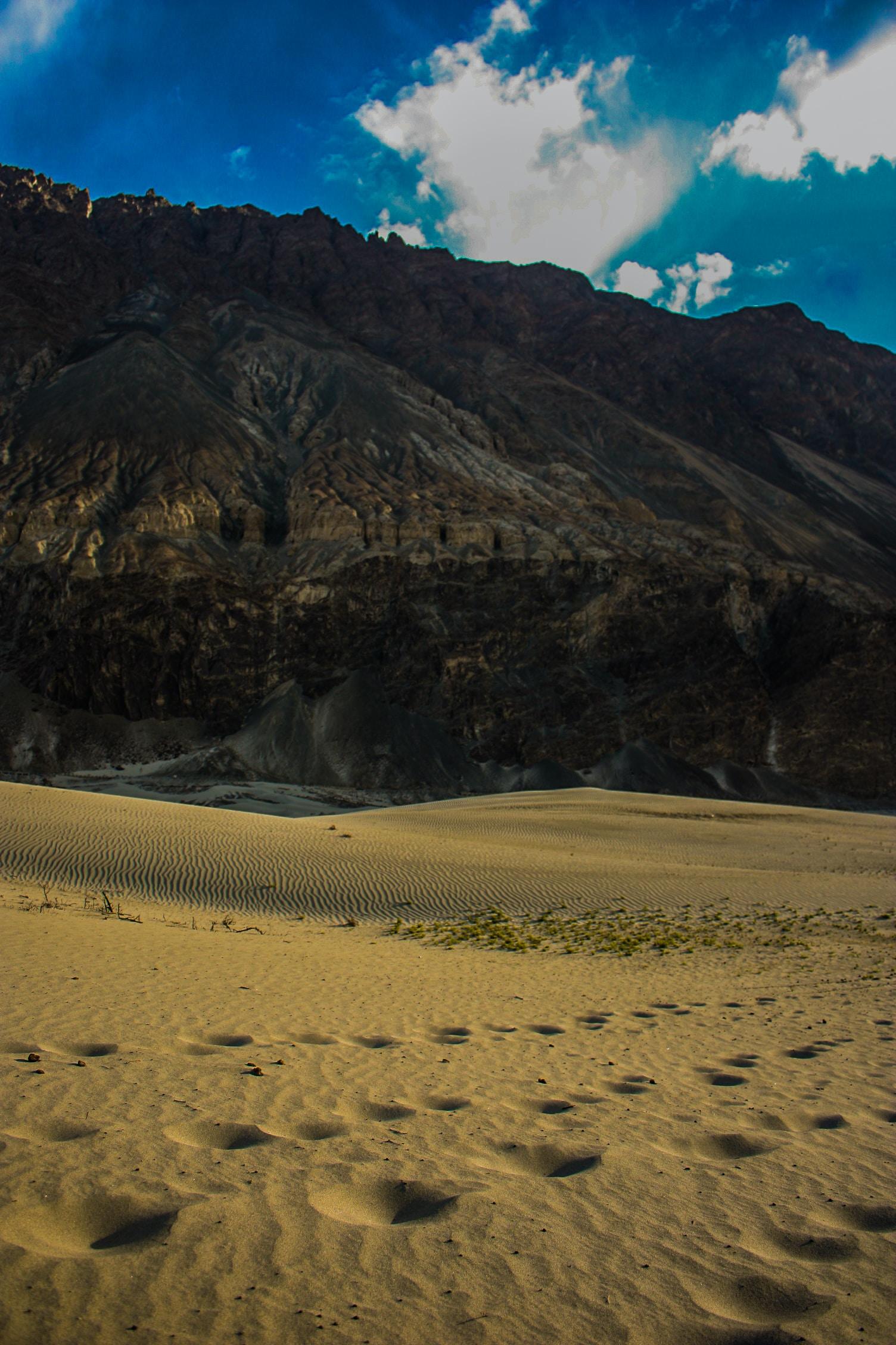 Free Unsplash photo from Abhinav Jha