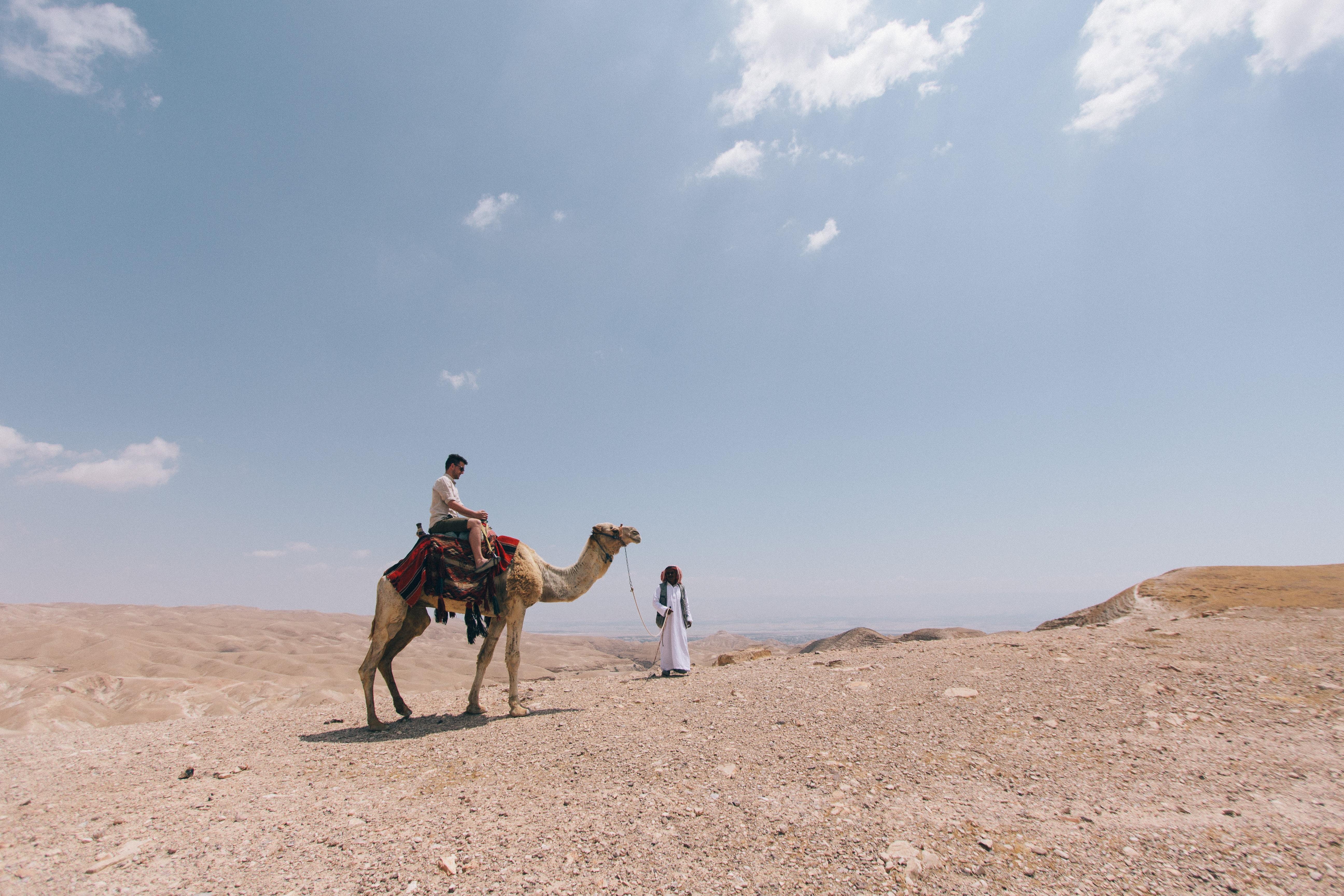 People ride a camel through the dry desert sand of Kfar Adumim