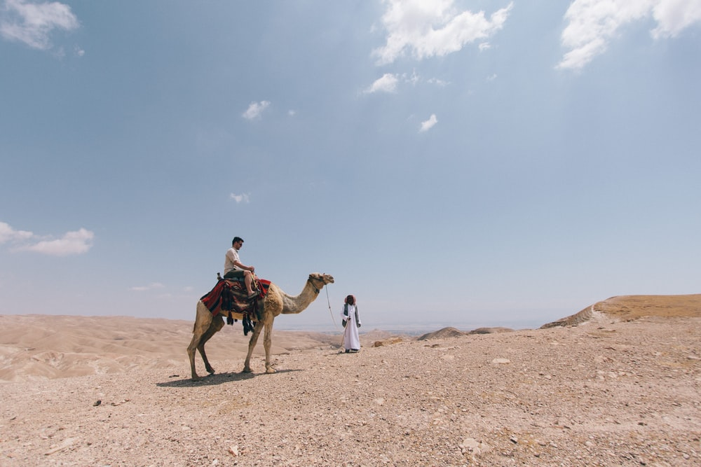 person ride on camel on desert