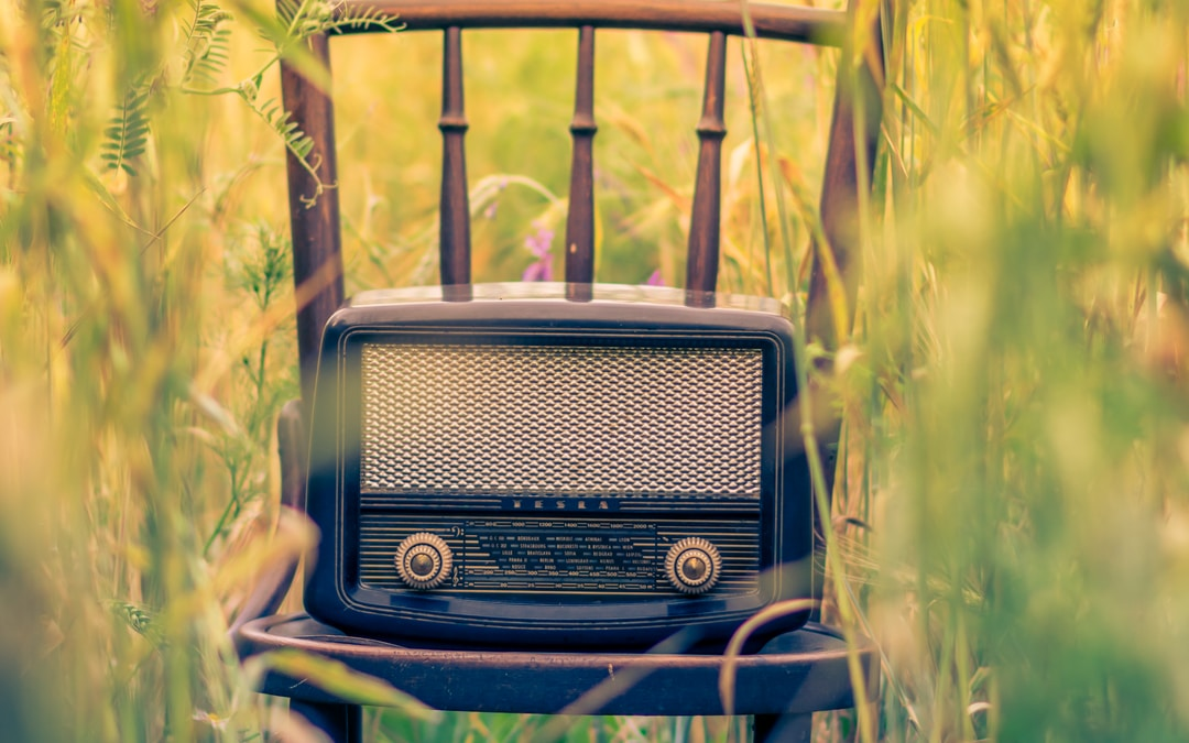 How and why you should position your speaker at a wedding