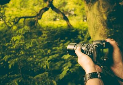 Man taking photo in woods