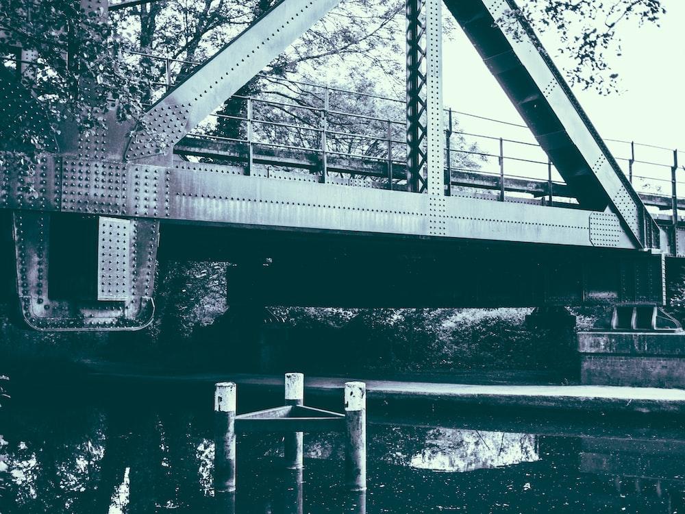 grayscale photo of bridge between trees