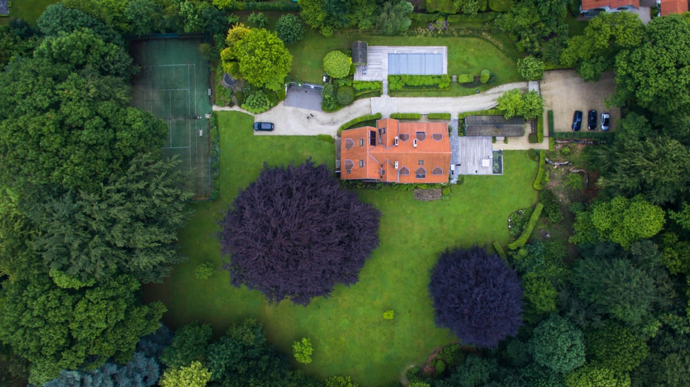 aerial view of house surround trees