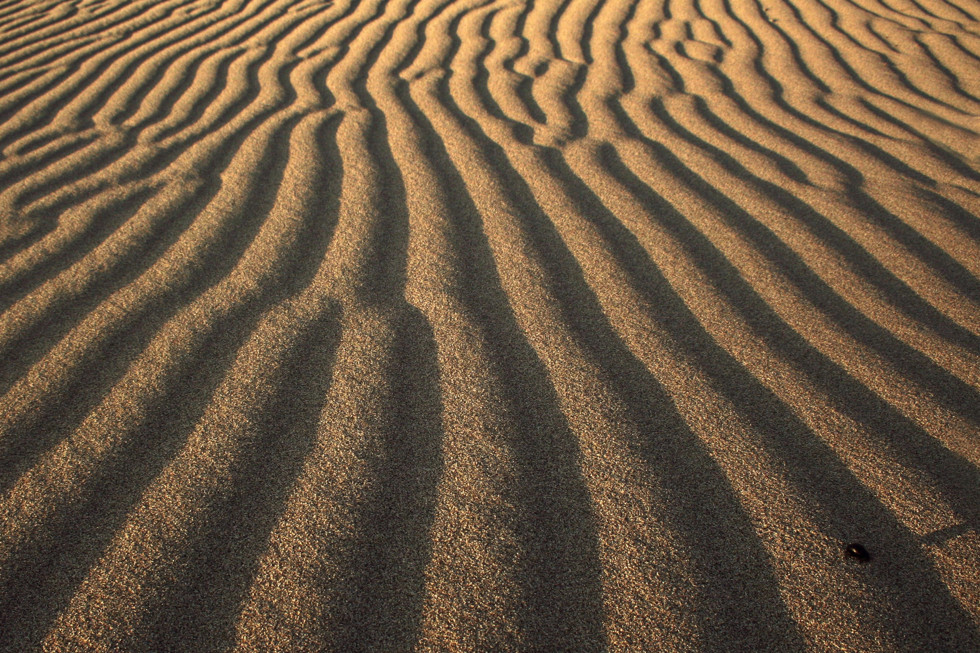 Wind forms ripple patterns in the sand of Fethiye desert
