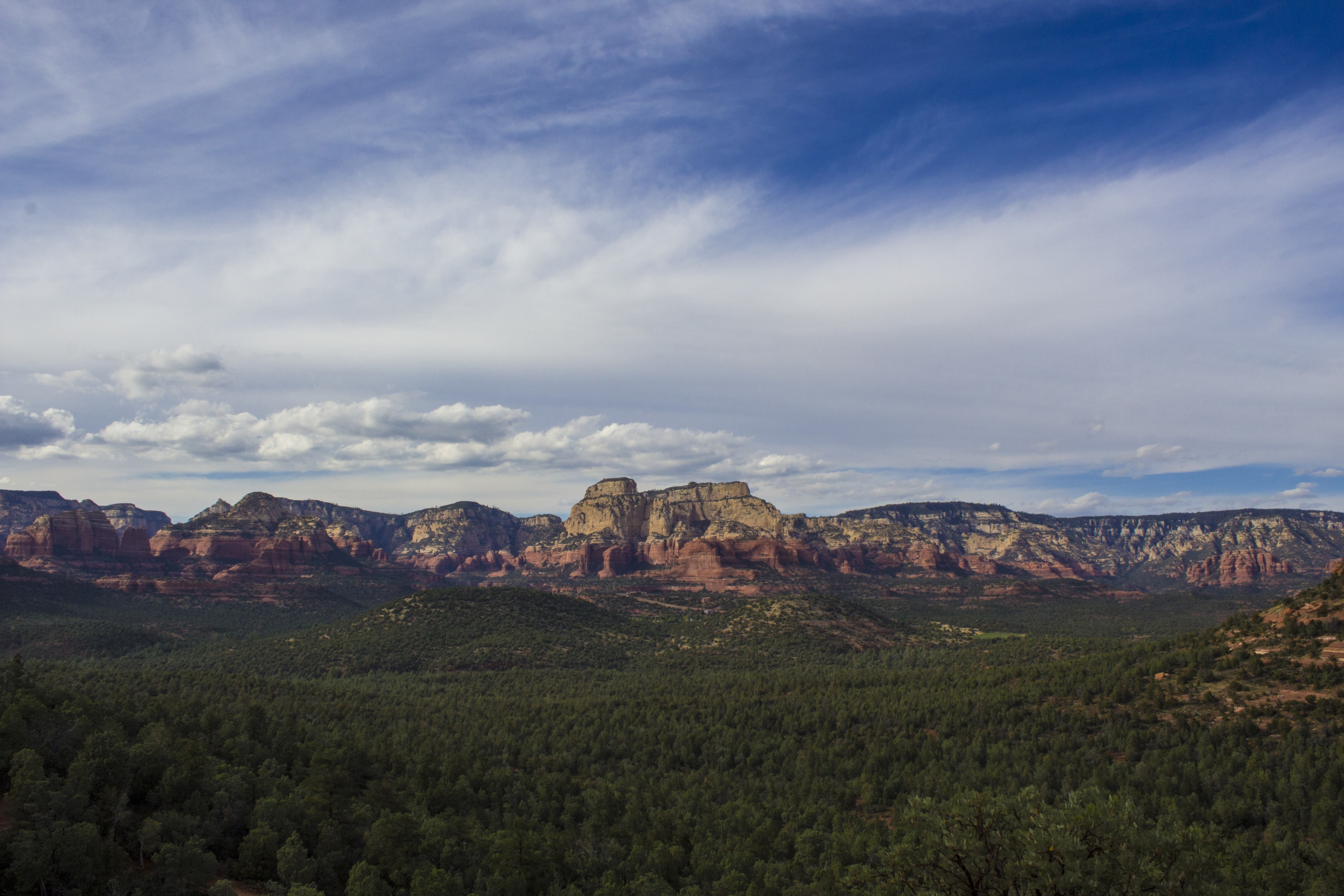 Red rock formations near a green forest in Sedona