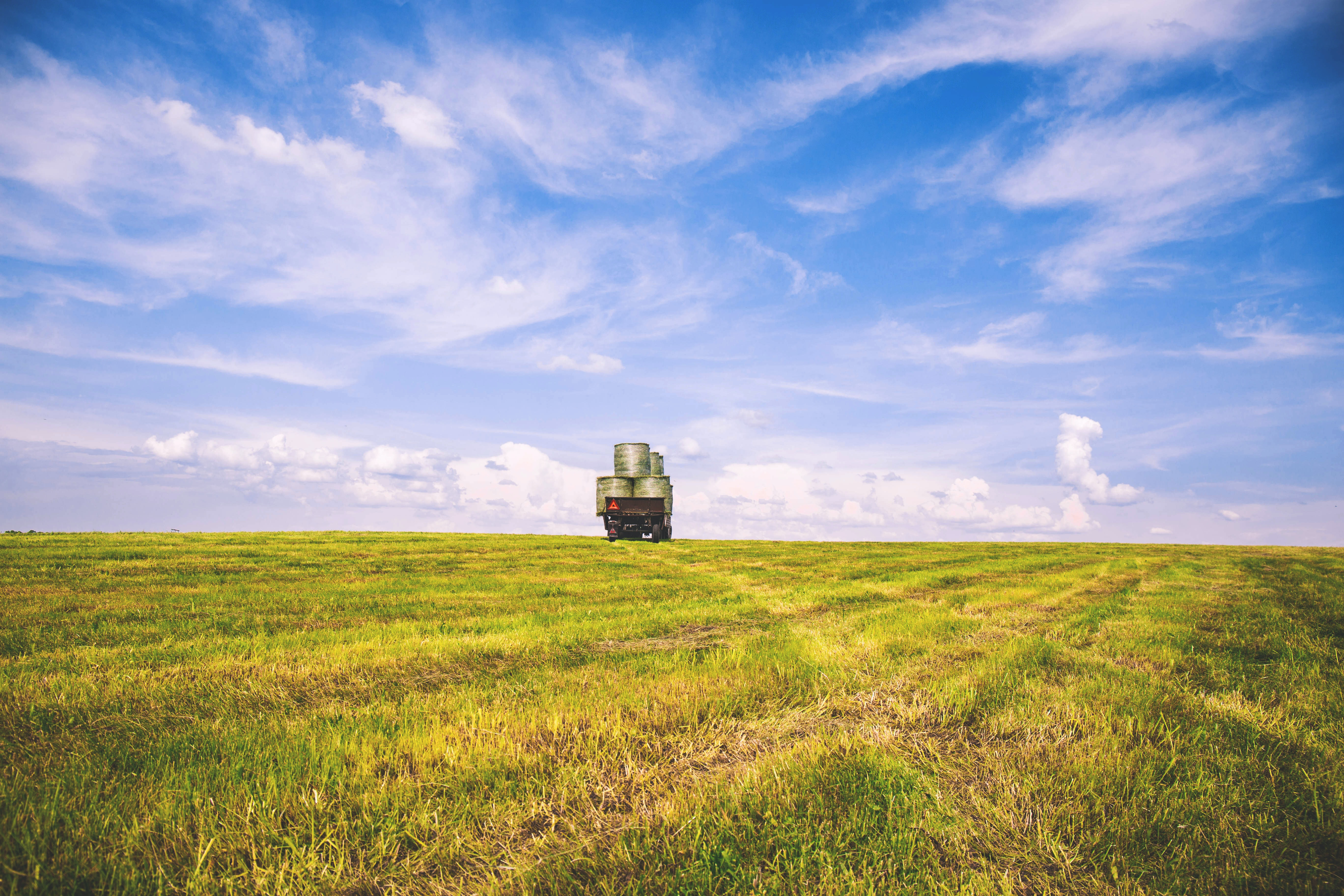 A green field and a truck driving off into the horizon where it meets the blue skies in Suchawa