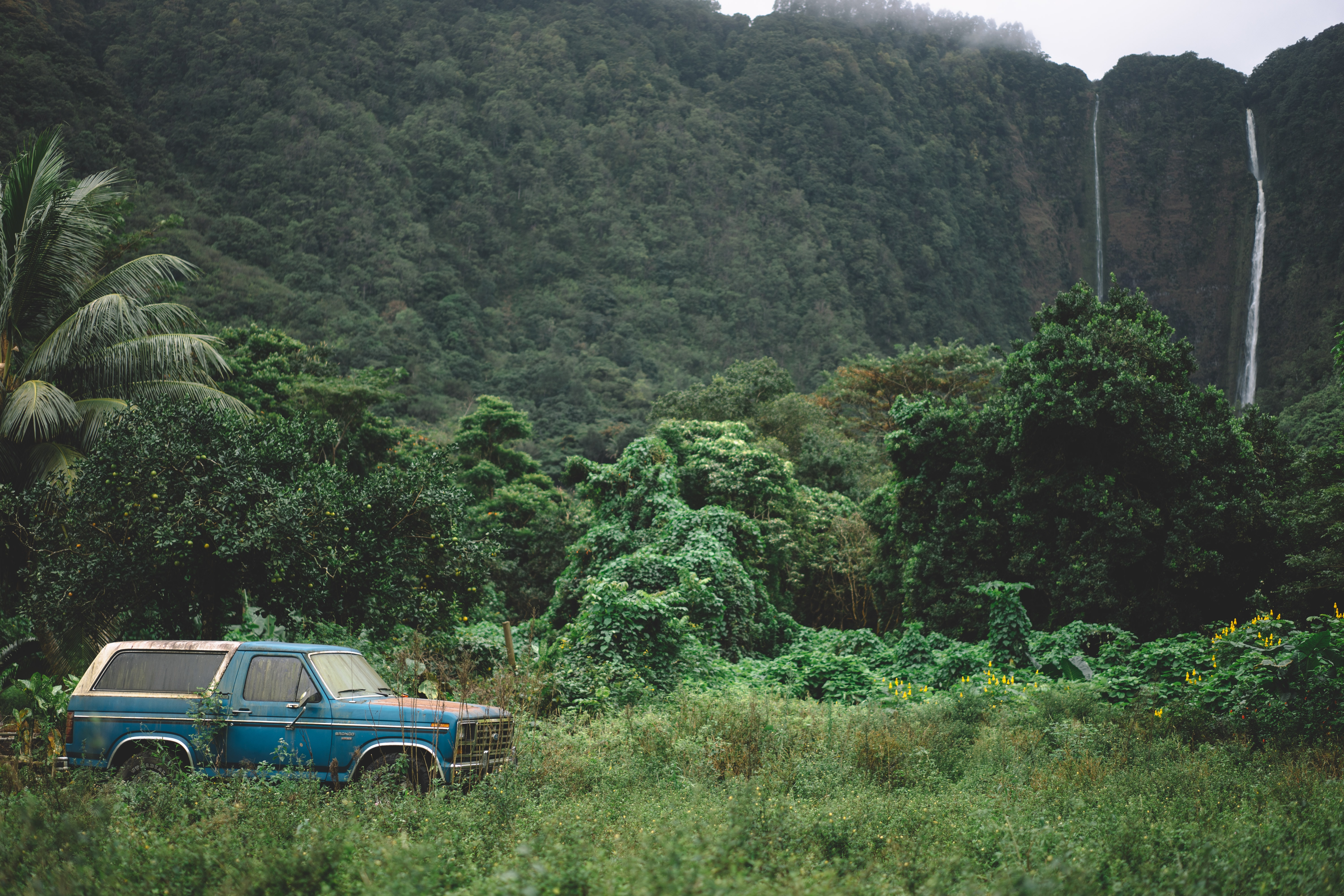 A blue SUV parked in the green thicket near rock face with twin waterfalls