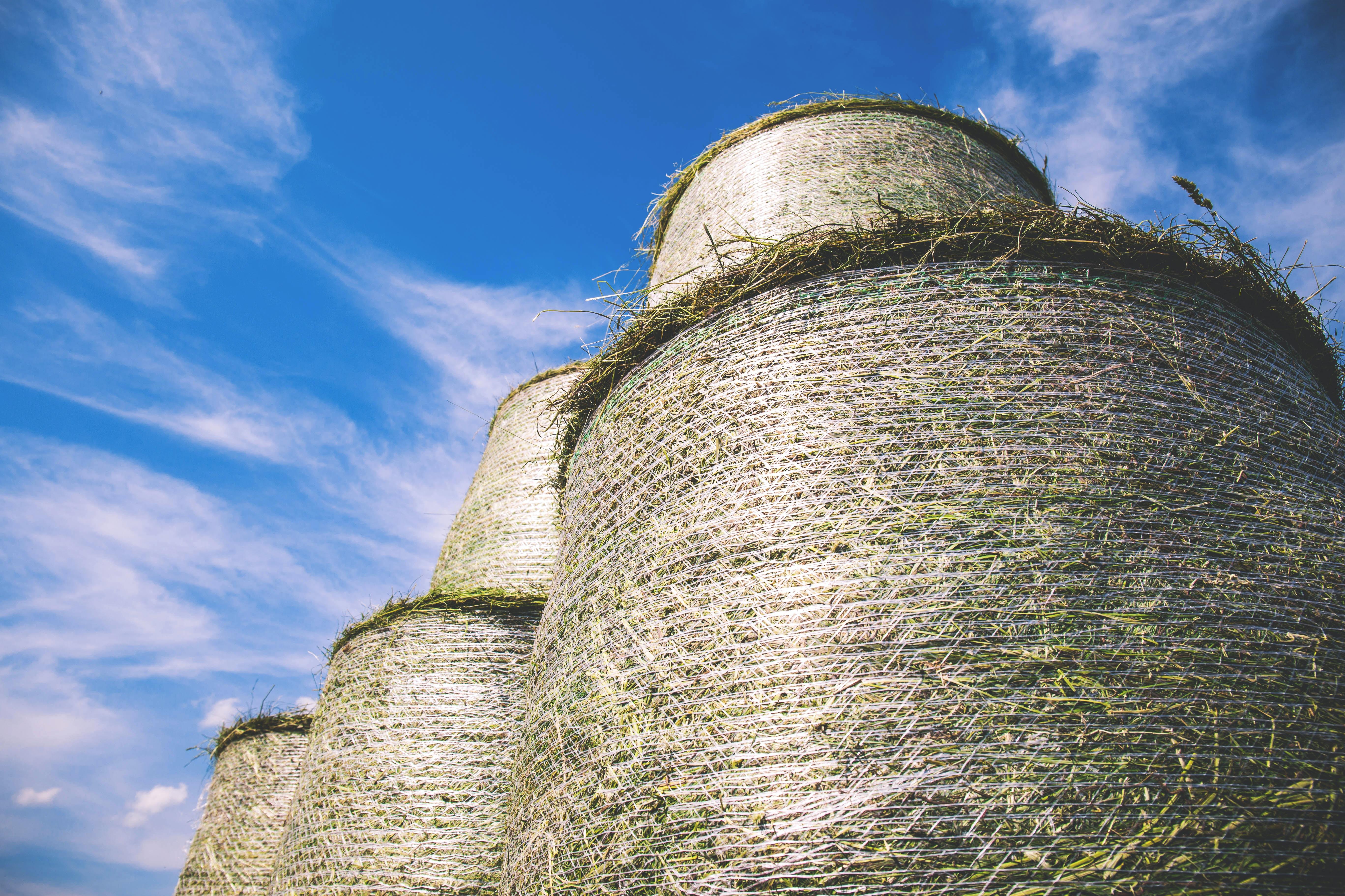 brown haystacks photography