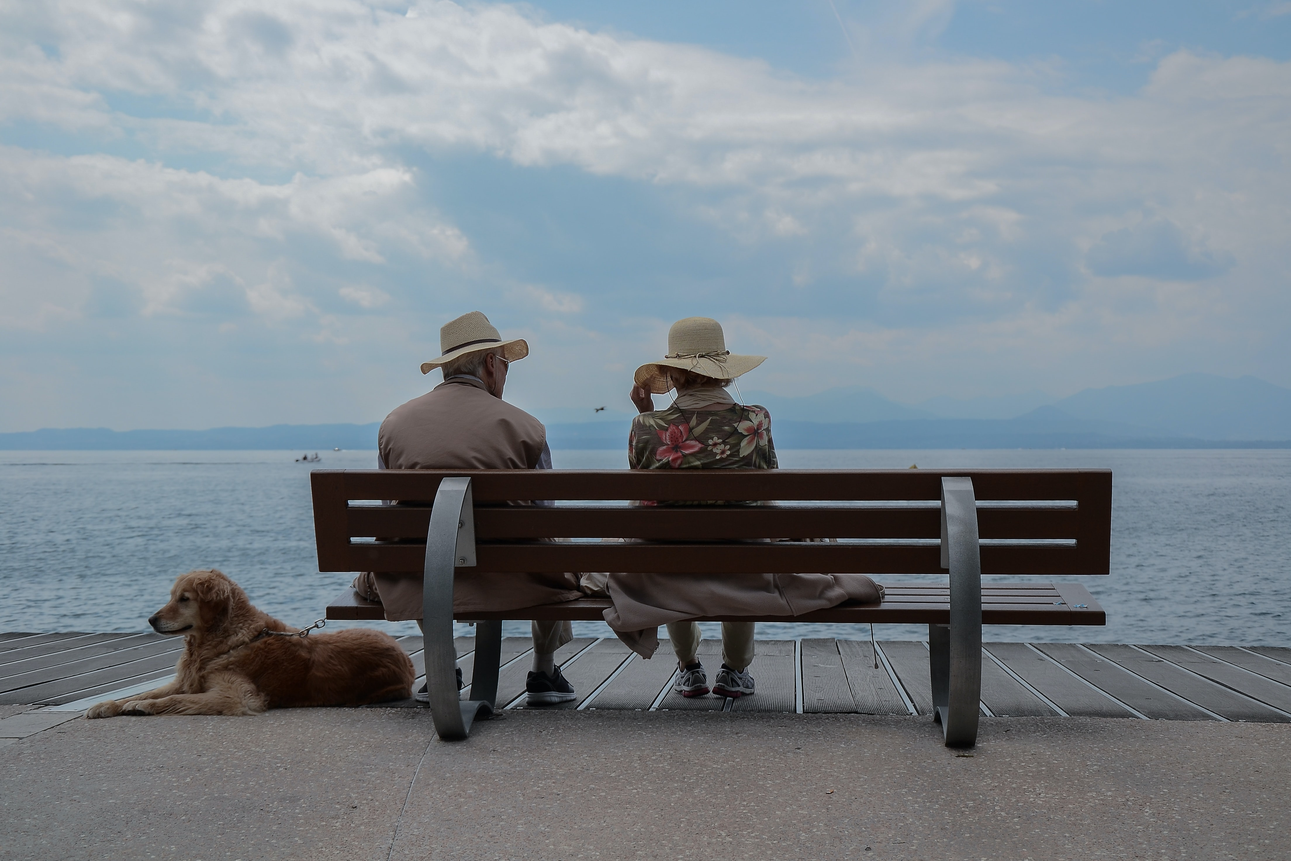 An older couple enjoy a seaside moment on a bench with their dog