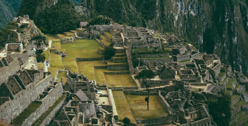Ecuador & Peru: Ecuador Branch-Whale Watching-Cusco-Machu Picchu-Peru Branch-Lima