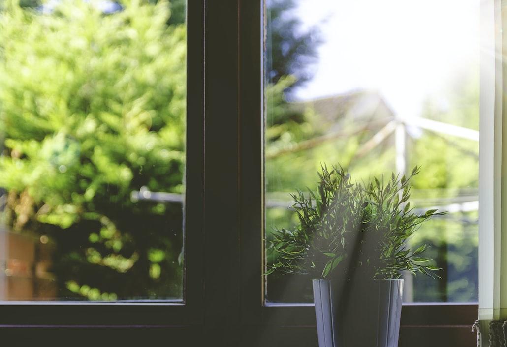 Indoor Herb Garden | How To Successfully Grow Herbs Indoors
