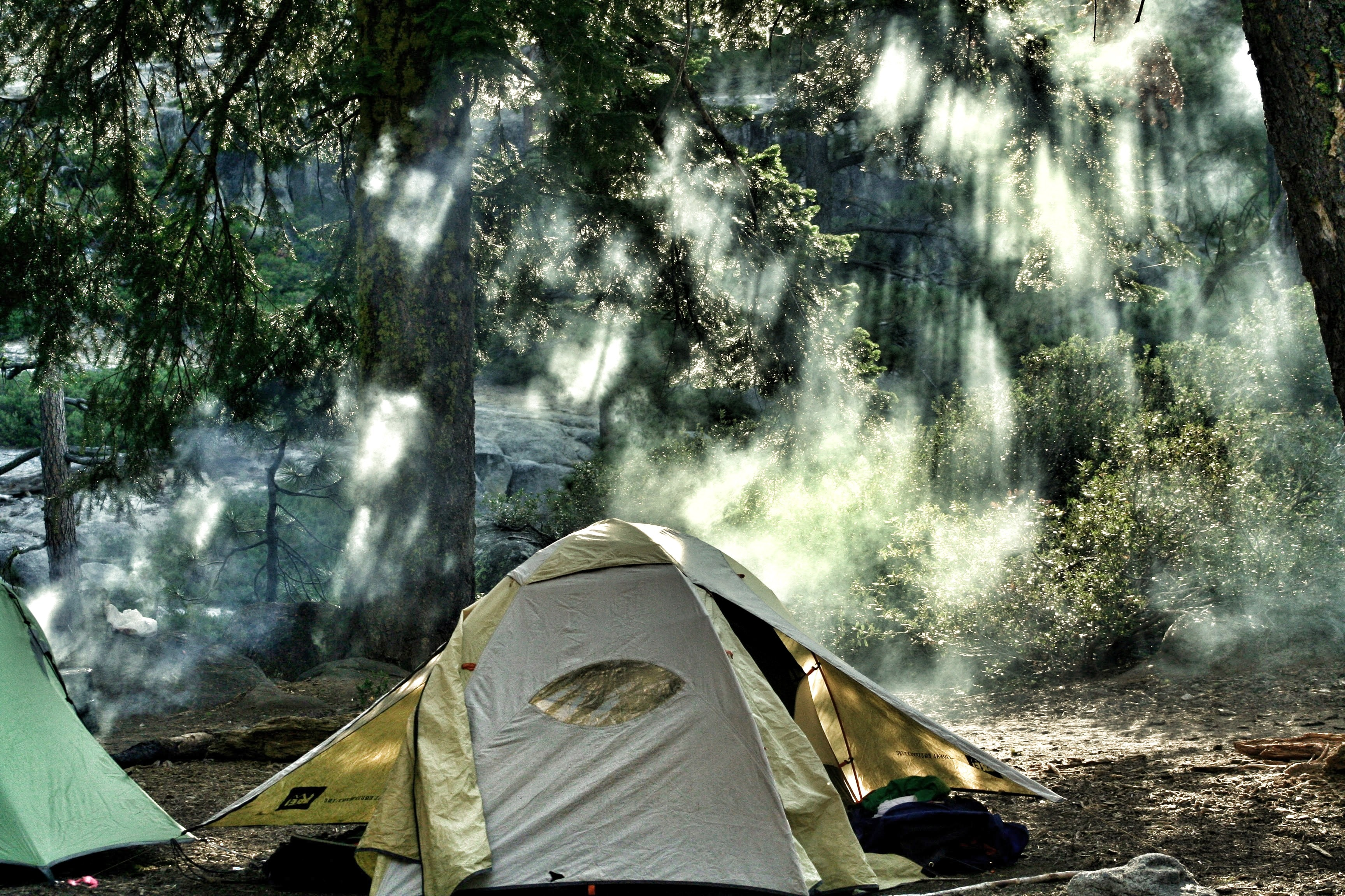 Yellow tent pitched in green wooded area with rays of sun in Yosemite Valley