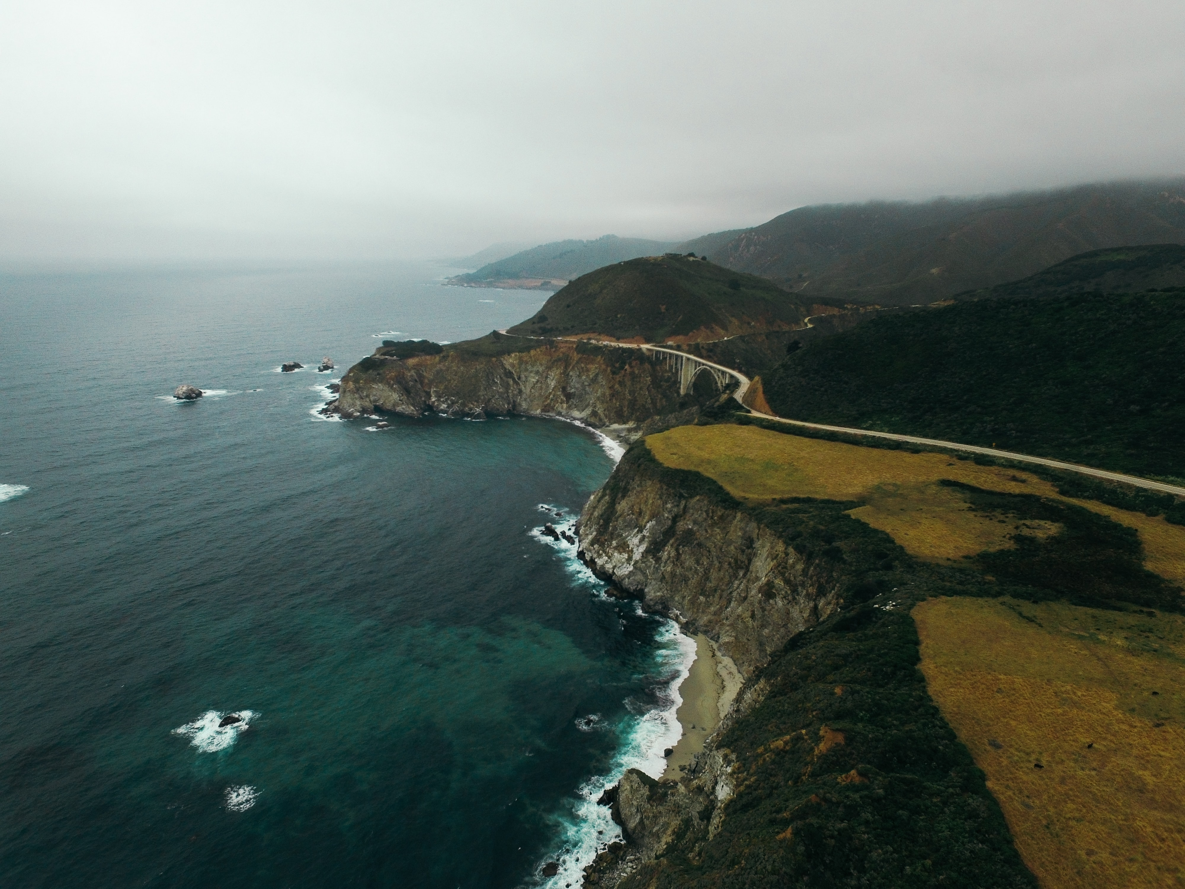 Greenery on the rocky coastline of the oceans of Big Sur