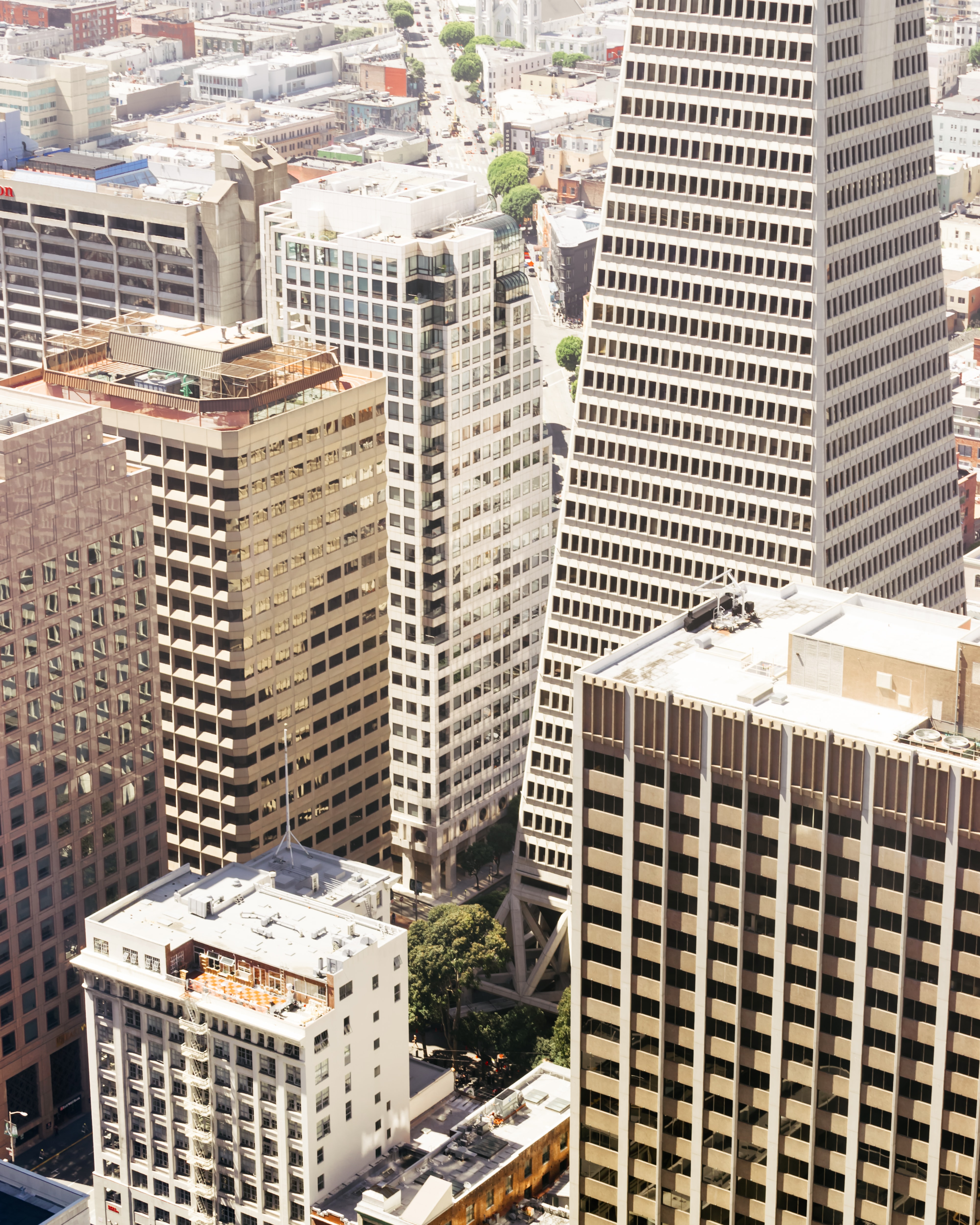 aerial photography of city building