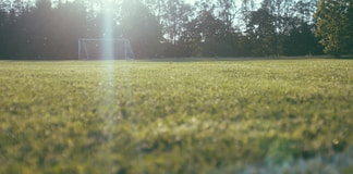 worm's view of soccer goalie on lawn near tall trees