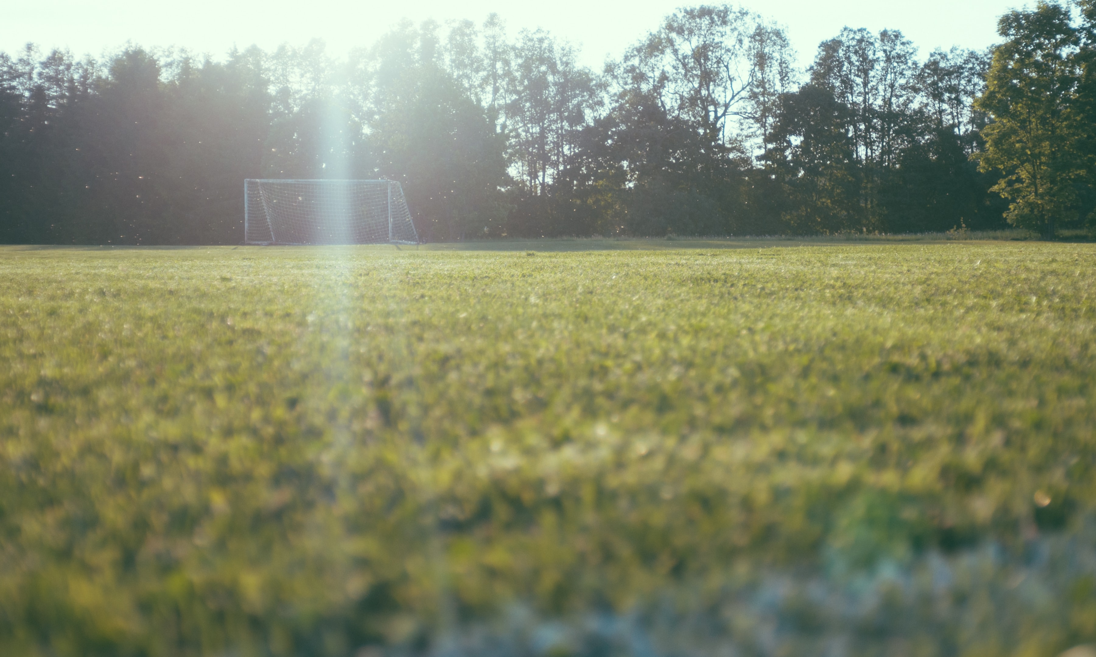 Low angle view of a green grass field with a soccer goal by the woods on a sunny day in Sweden