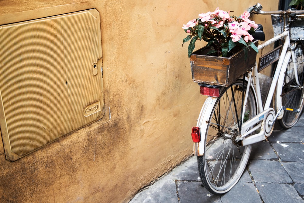 white bicycle with potted flower beside yellow wall