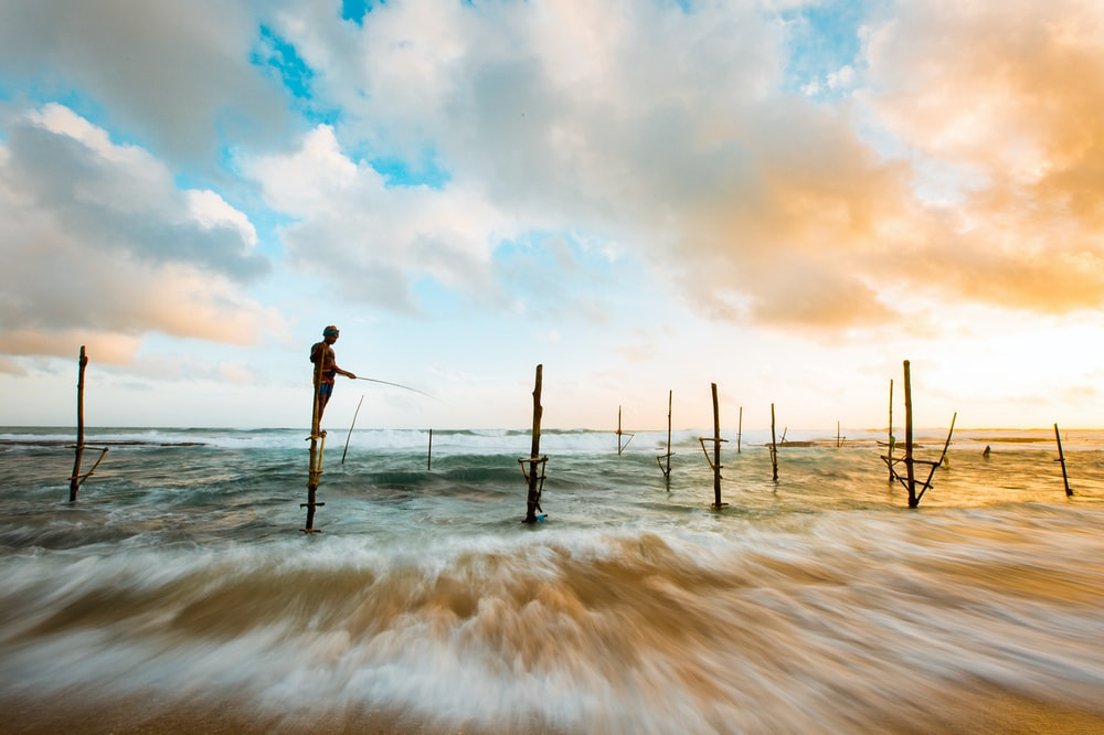 person fishing while standing on brown wooden post during daytime