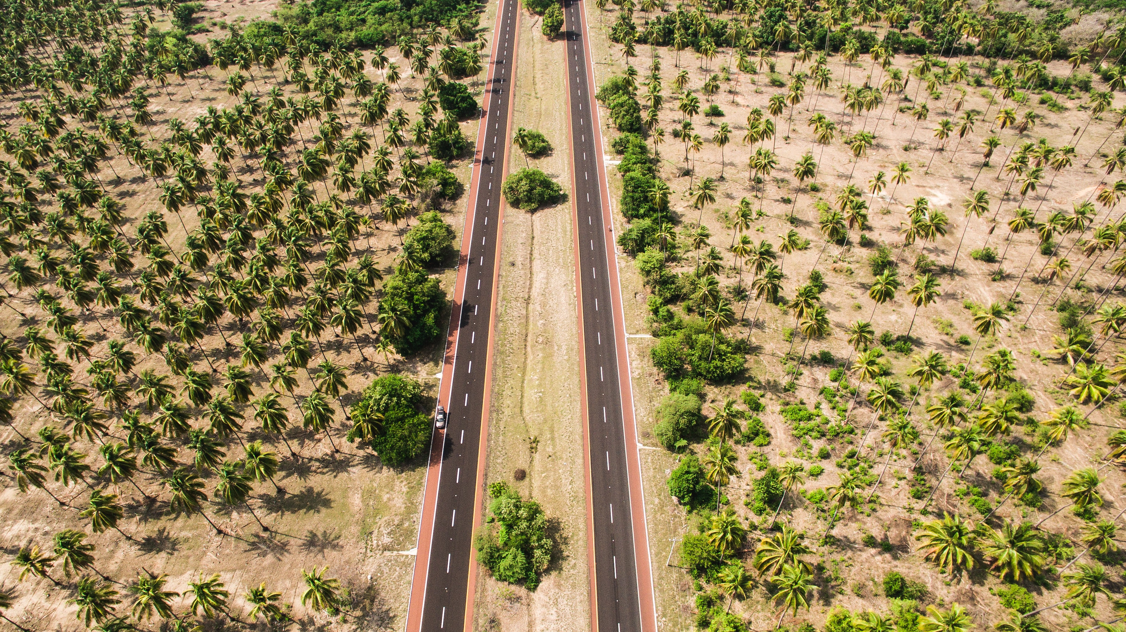 An aerial photo of two parallel lanes surrounded with palm trees