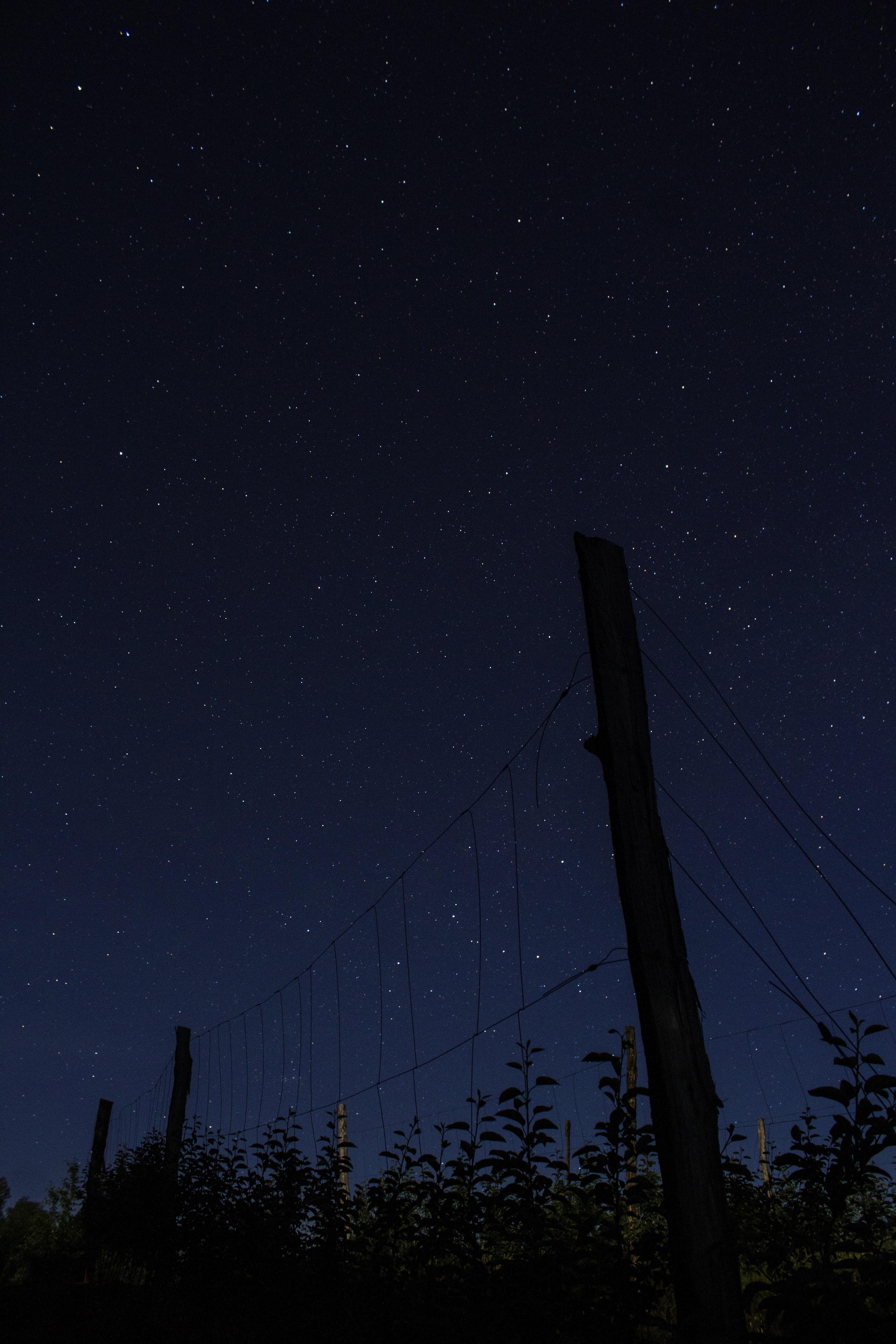 brown fence under blue sky