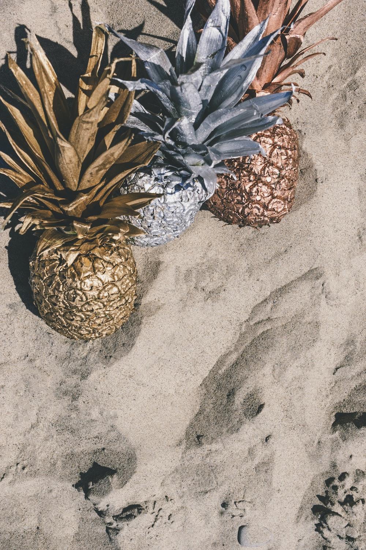 decorative pineapples on gray sand