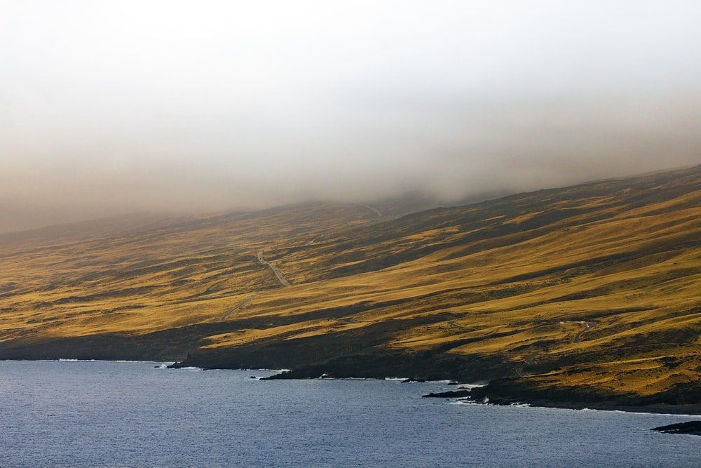 in distant photo of beach and landscape field with fogs