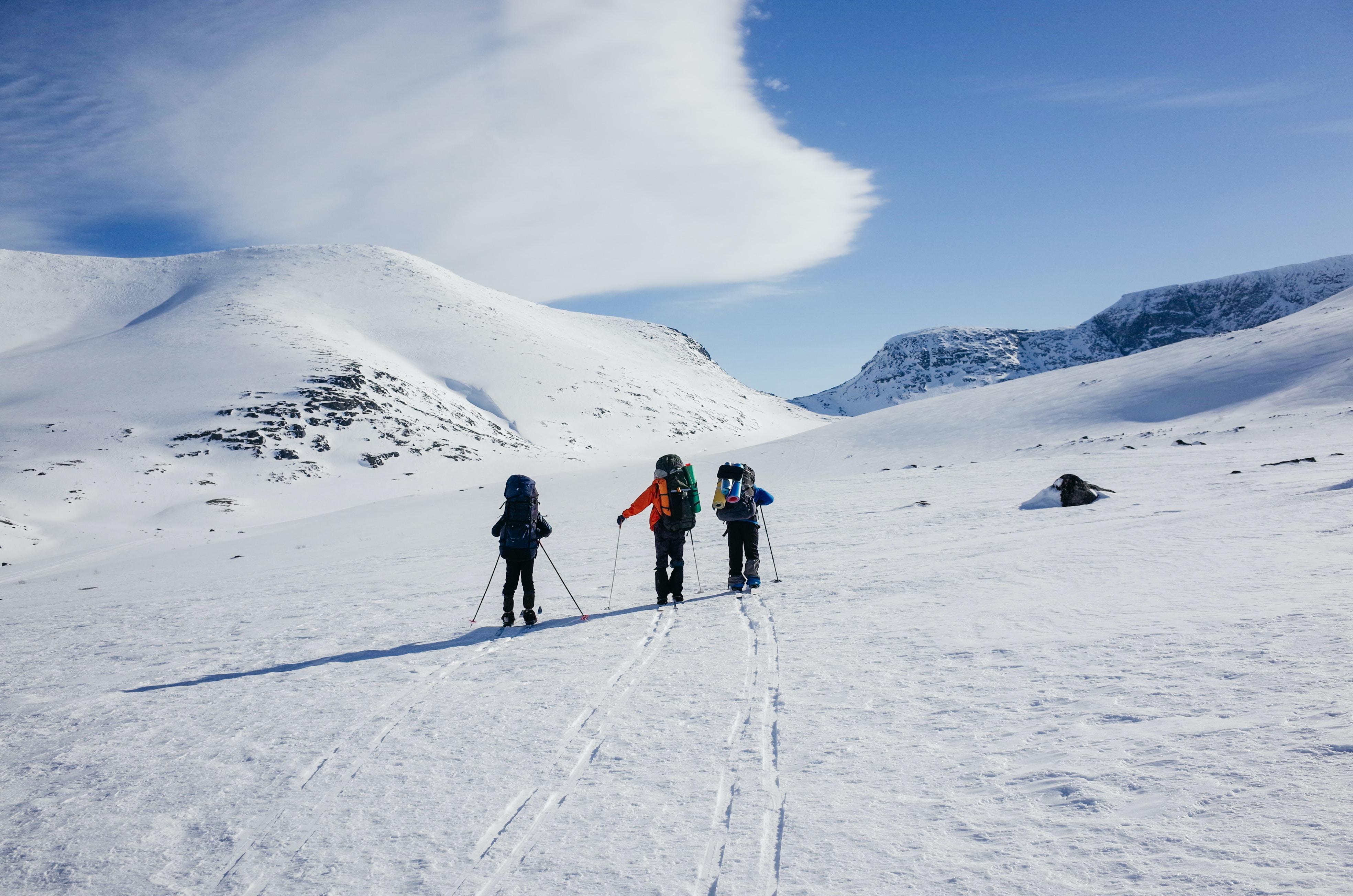 three person playing snow ski