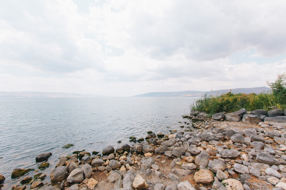 stones beside river
