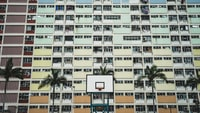 white and black portable basketball hoop near tall trees and concrete buildings at daytime
