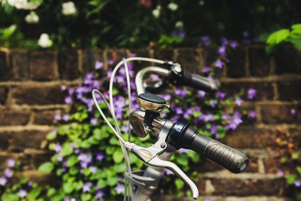 selective focus photography of bicycle brake near purple petaled flowers