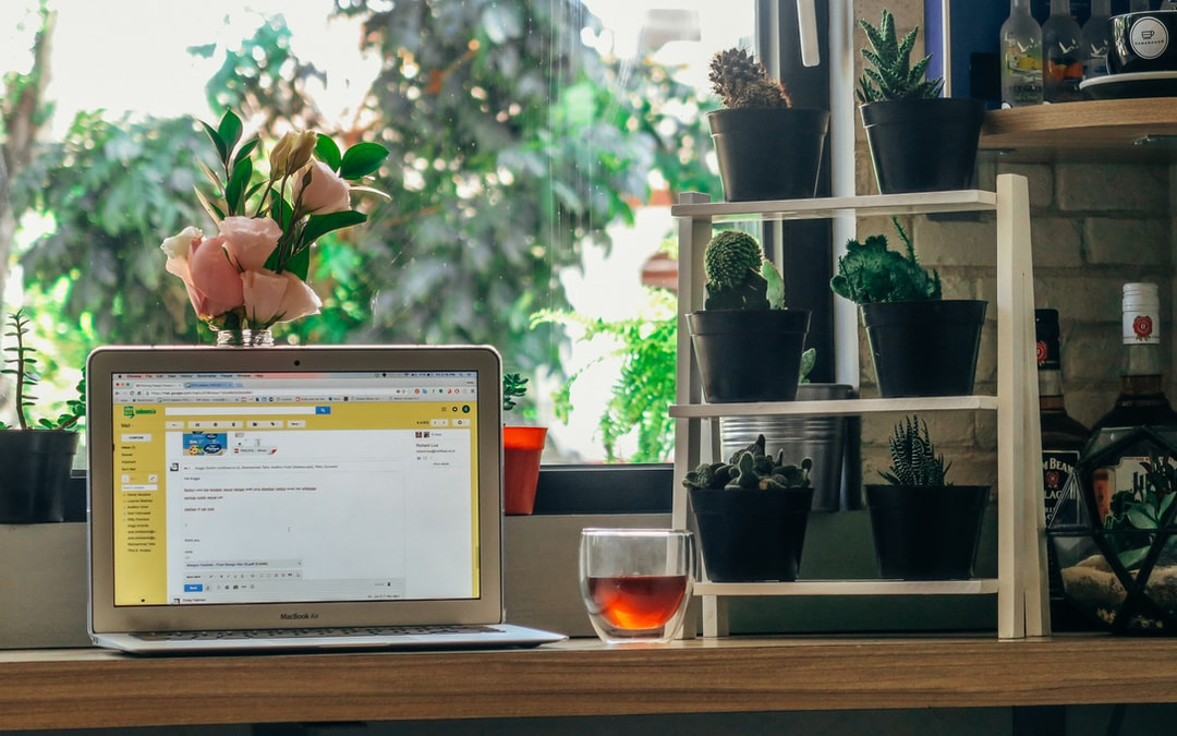 A laptop and a cup of tea on a desk surrounded with various plants