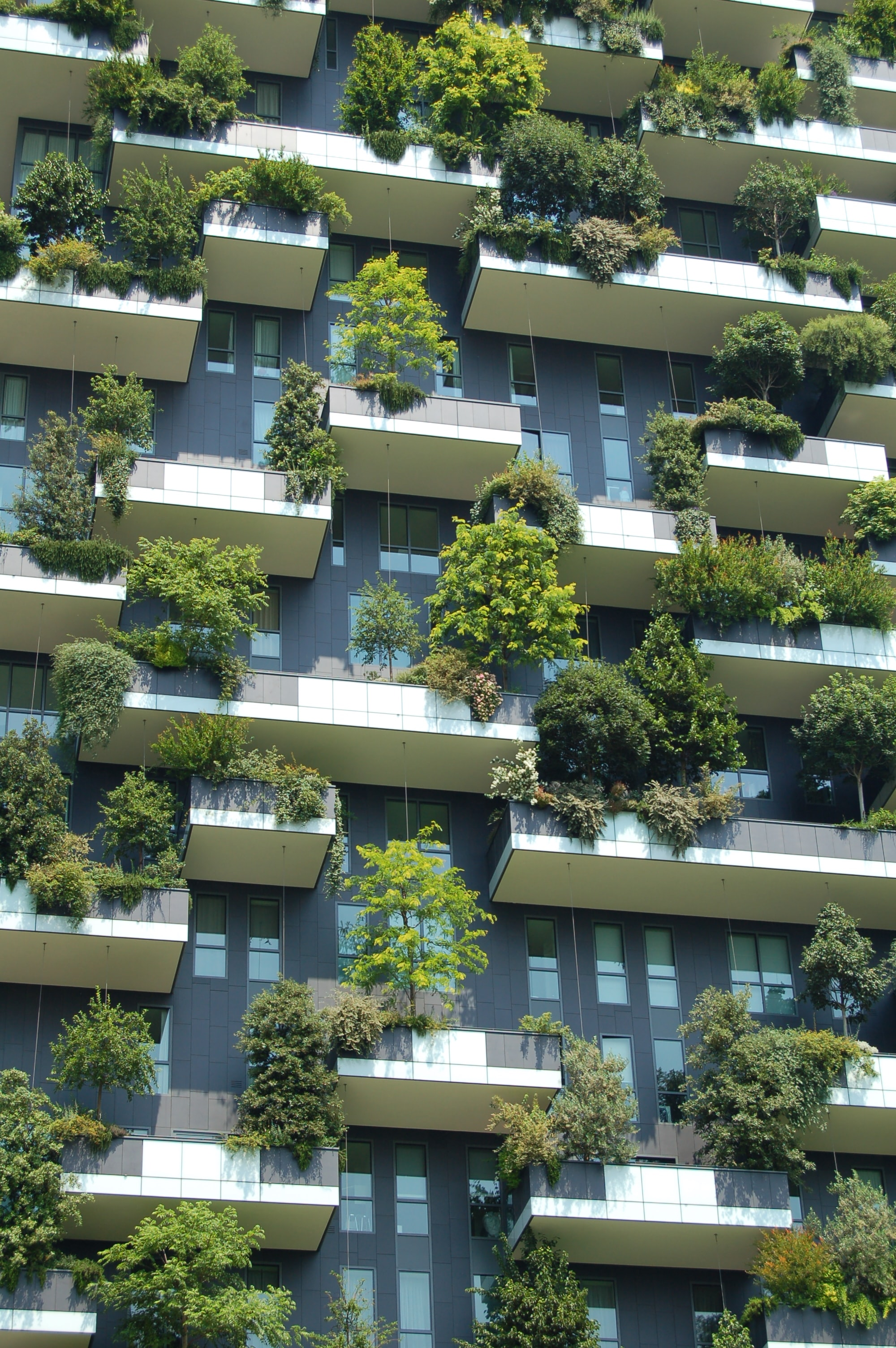 low angle photo of gray building with green plants