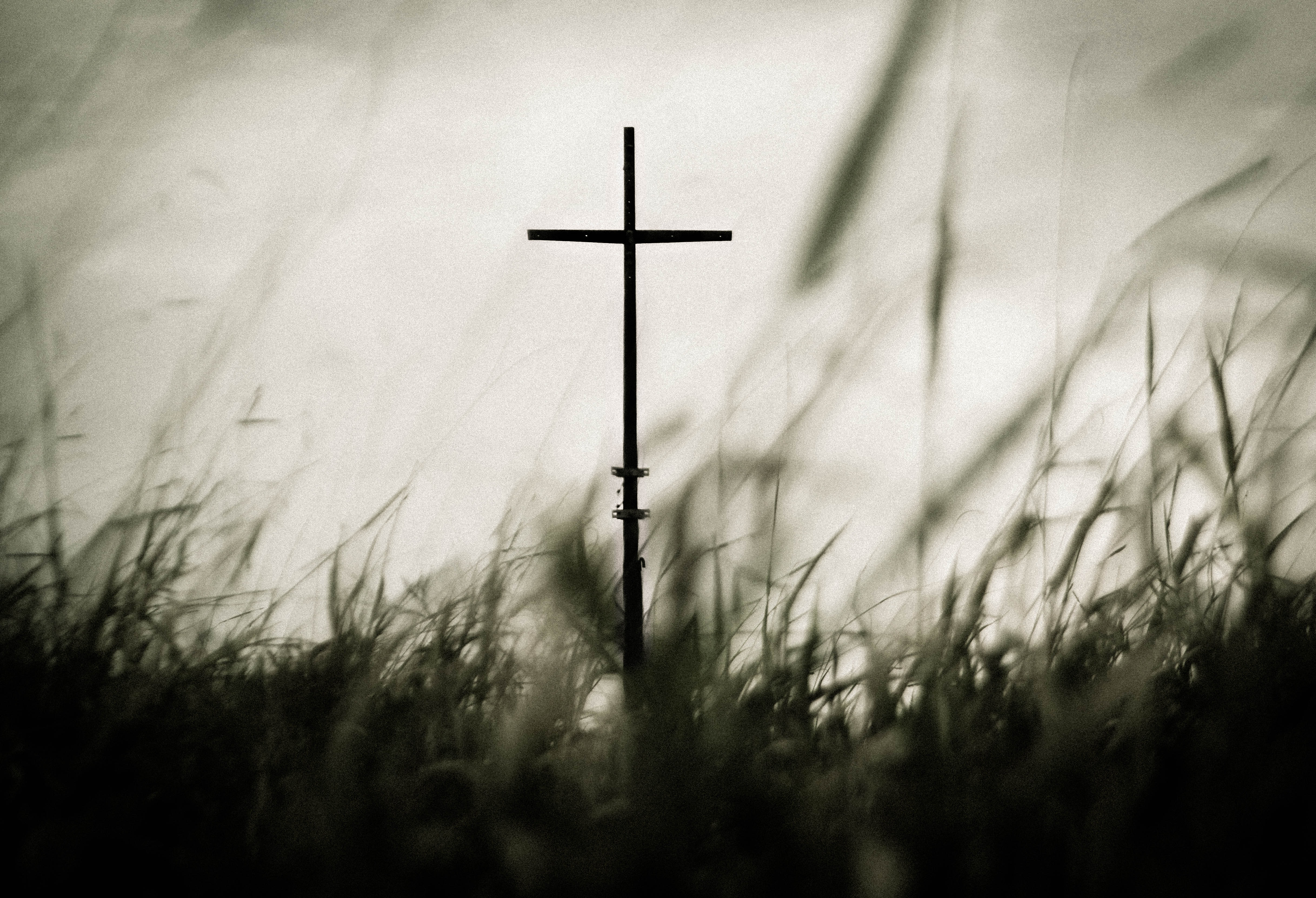 A stick shaped as a cross in a grass field.