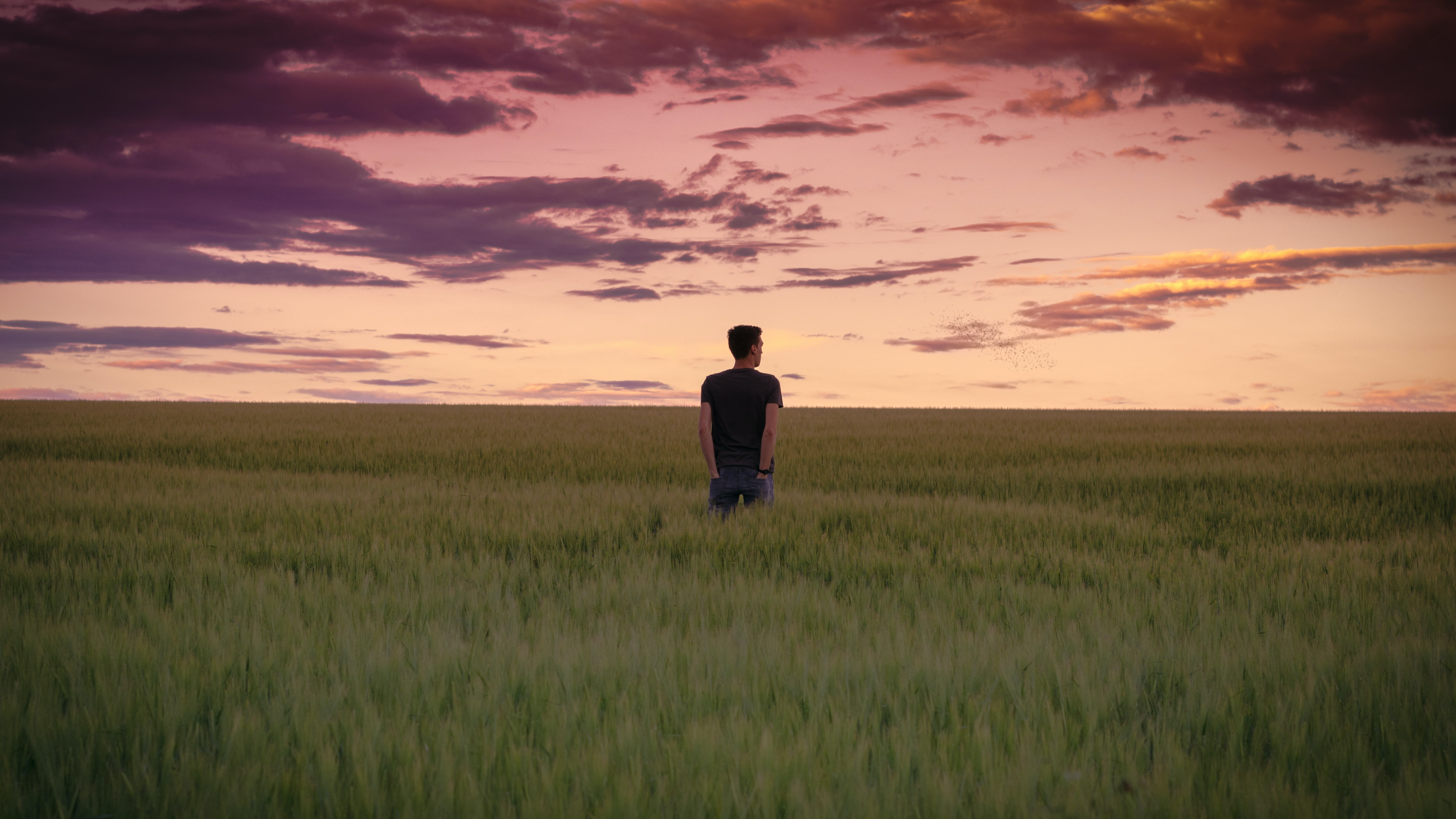 Man with hands in pocket standing in a field of grass, looking at the setting sun