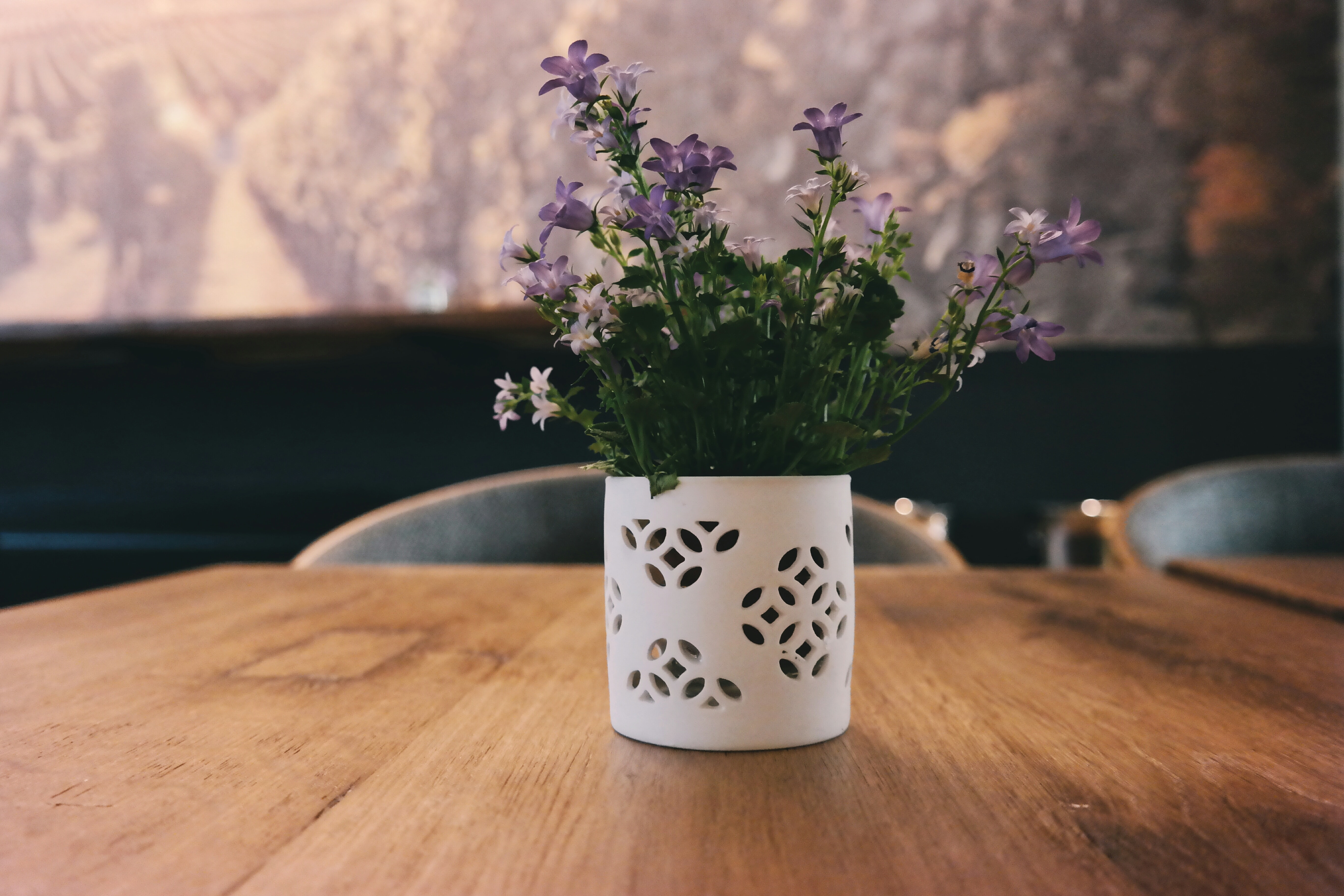 White and violet flowers in a white flowerpot on a wooden table