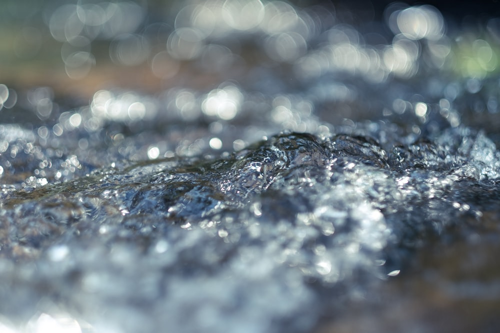 close up photo of water