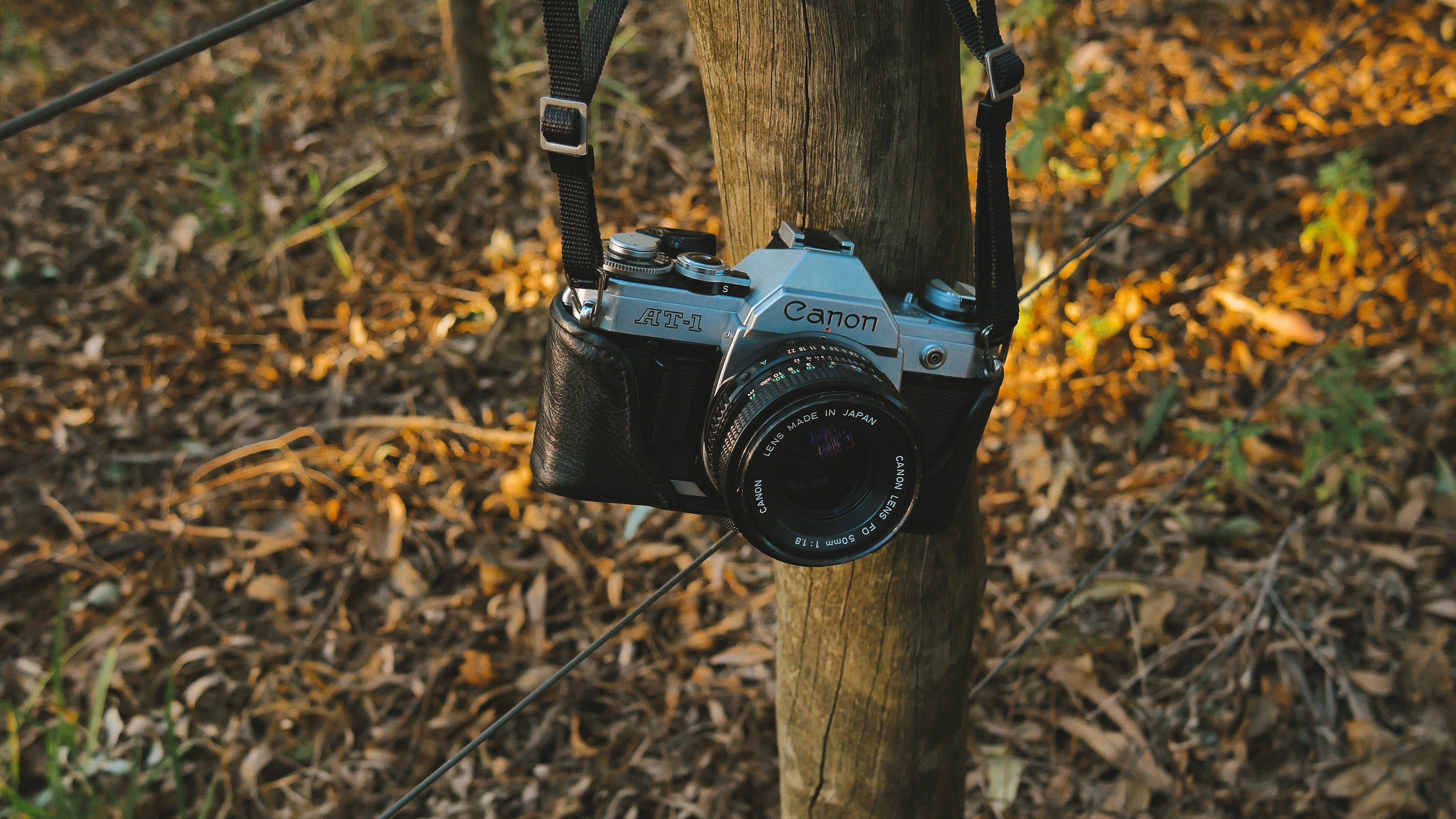 black and gray Canon SLR camera hanged on wooden trunk