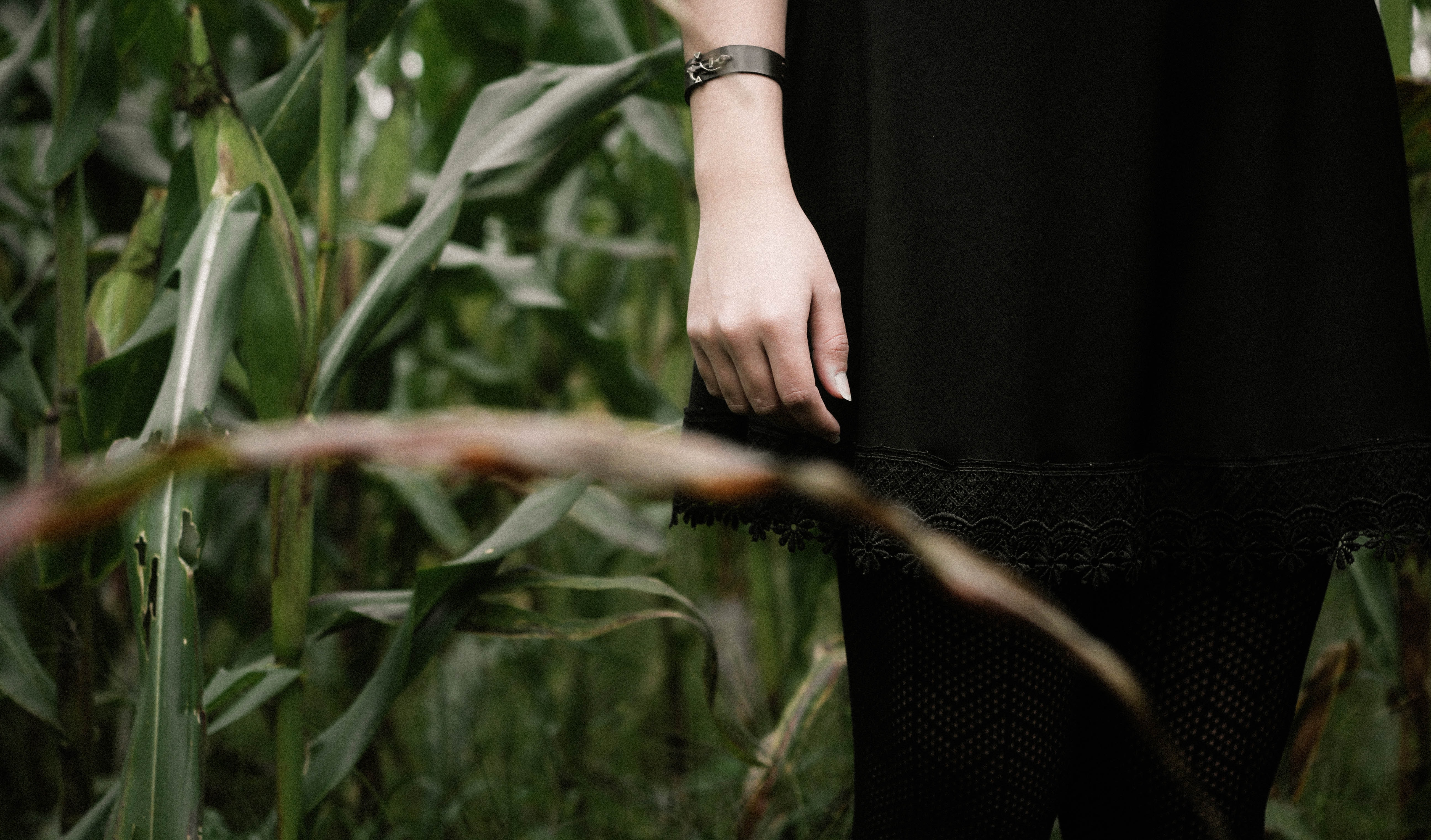 A low shot of a woman dressed in black standing in a green field