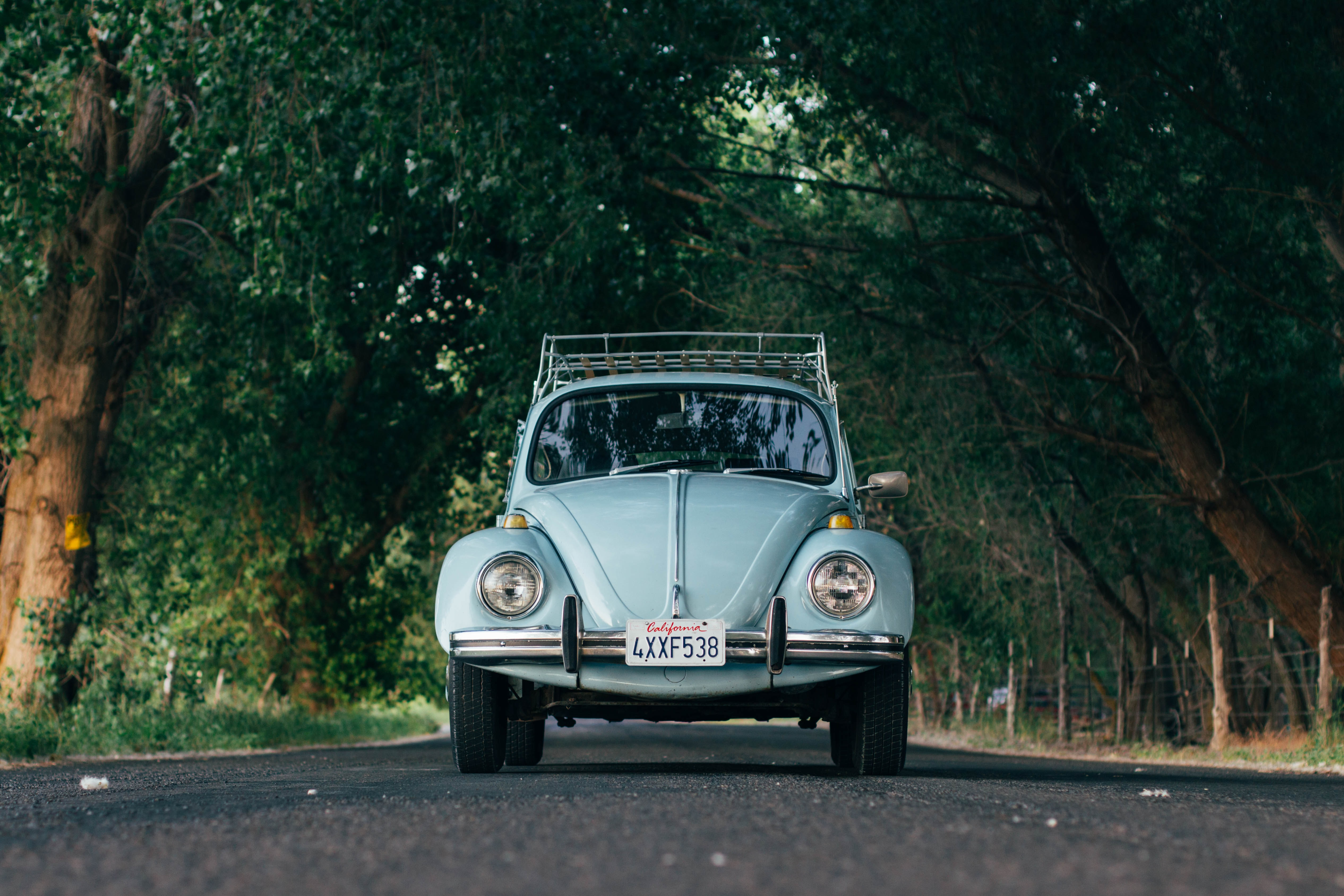 Vintage mint colored Volkswagen Beetle driving down tree lined country road