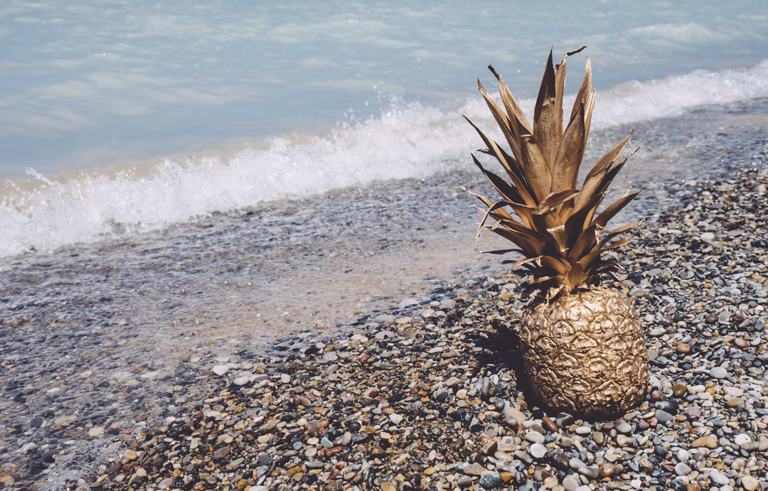 free high-resolution stock pineapple image from at the beach