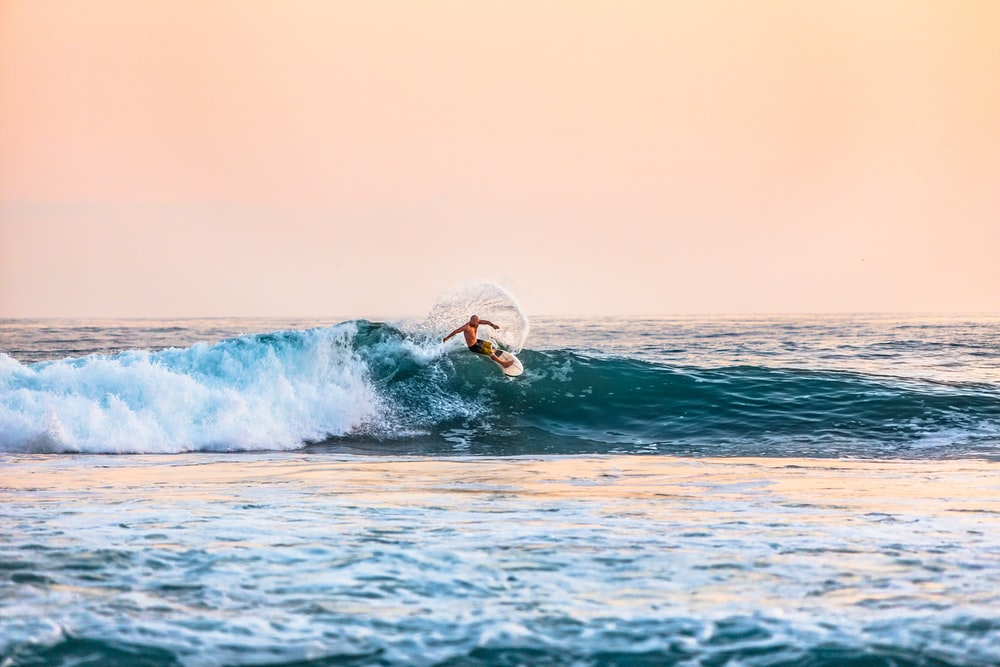 d7ae1f464d 20+ Best Free Surf Pictures on Unsplash