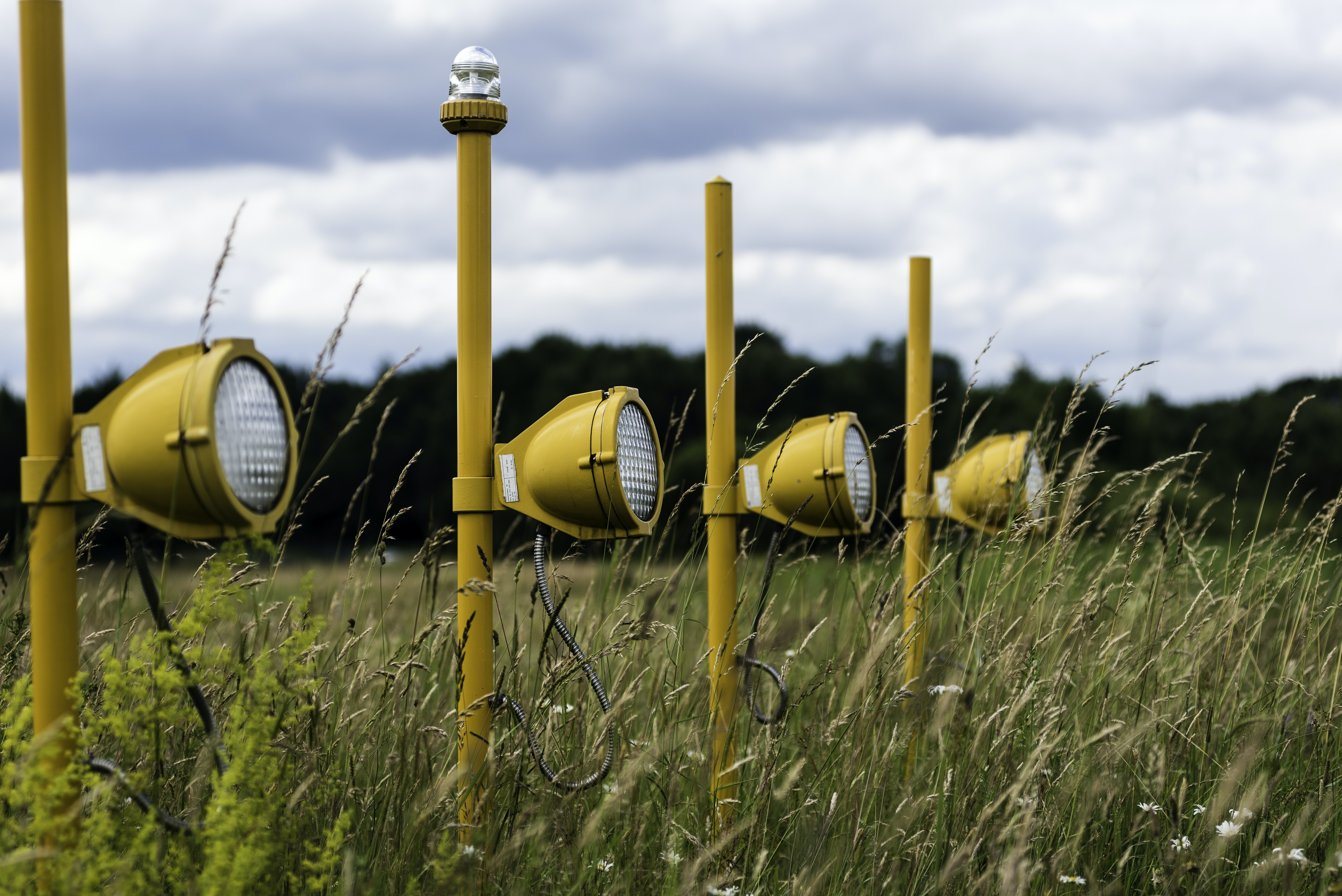 four yellow post lights on green grasses