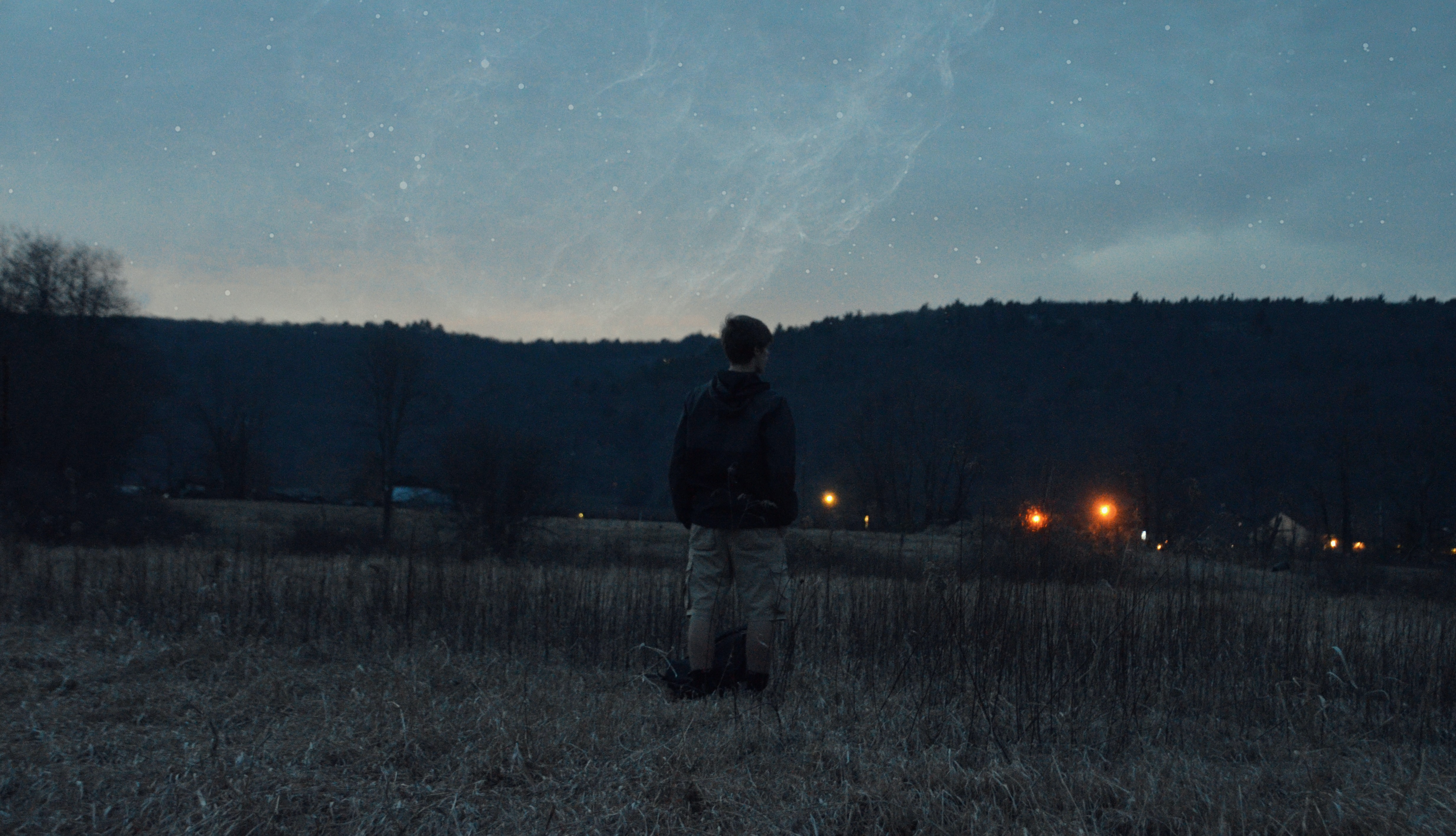 A man standing in dry grass under starry sky in the evening