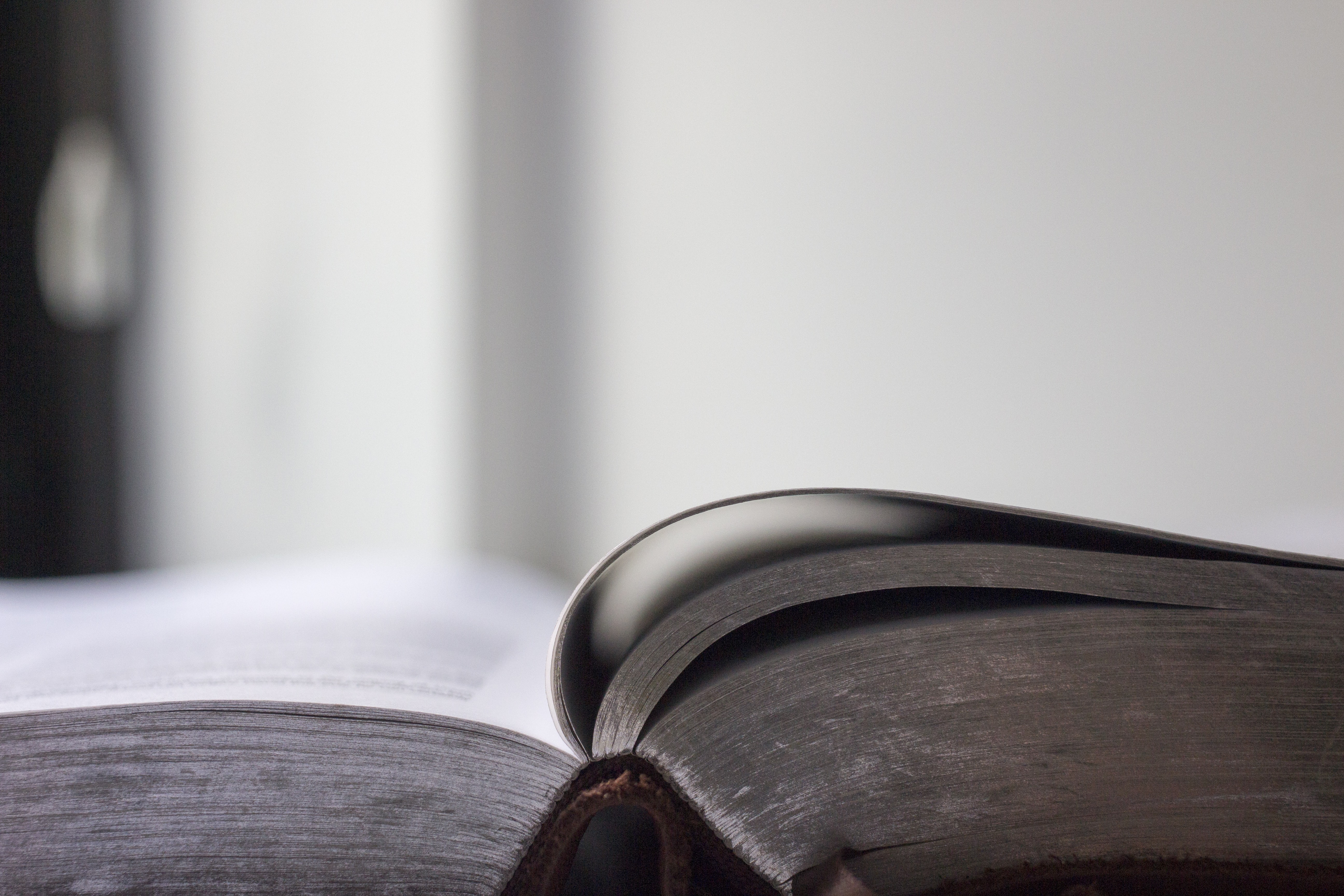 selective focus photo of an opened book