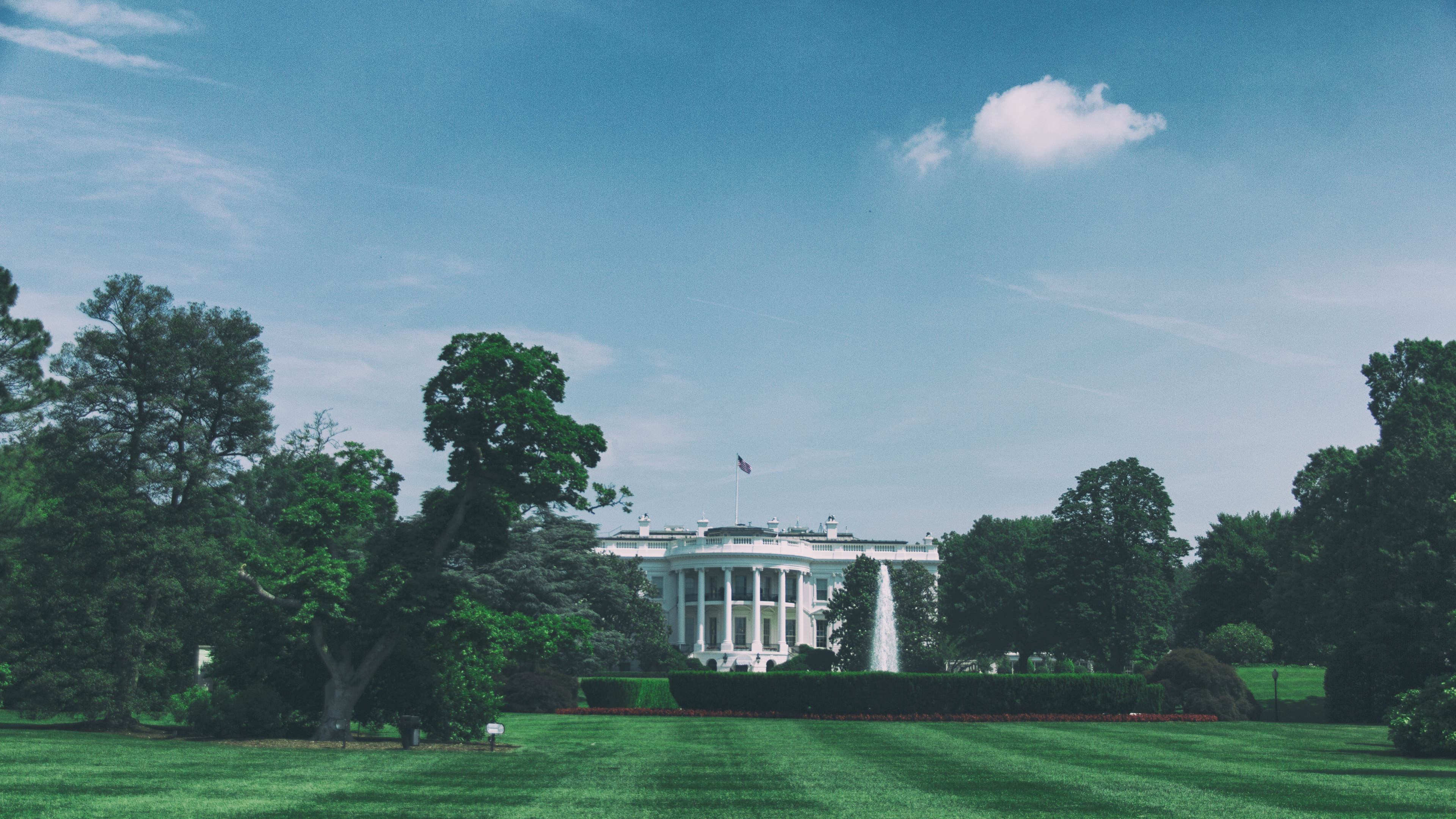 White House and green trees